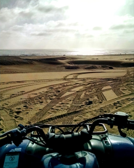 The view from the quad bike