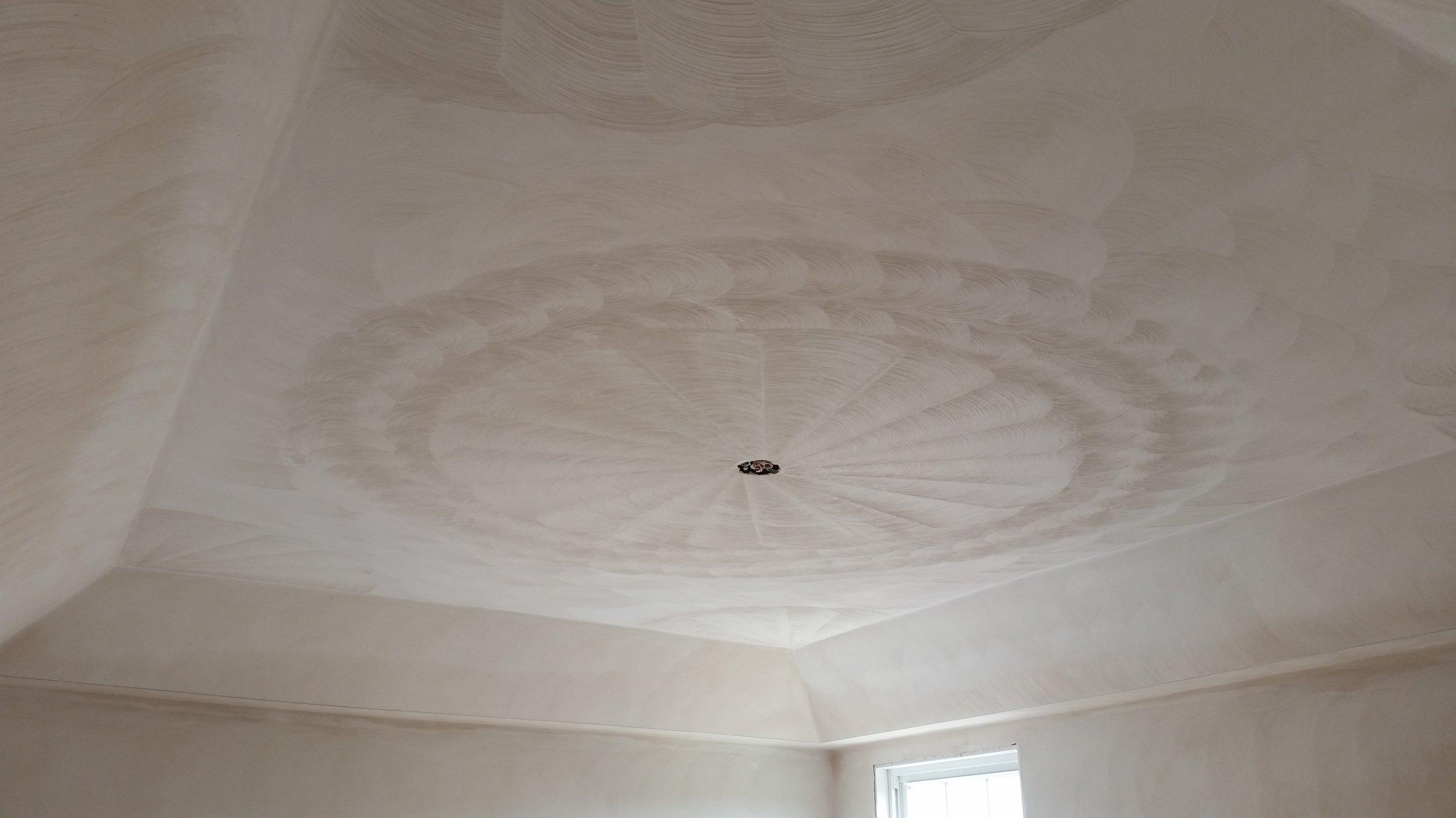 Ceiling Brush Design