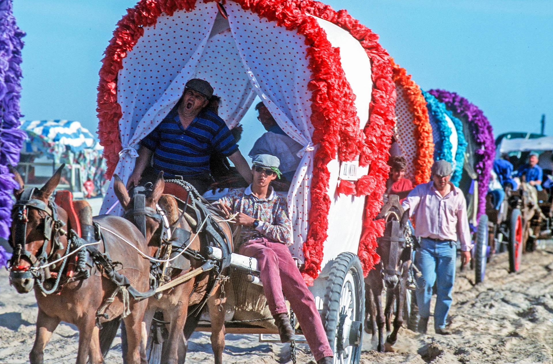 The miracle around the world: El Rocio, the caravans cross the Donana park.