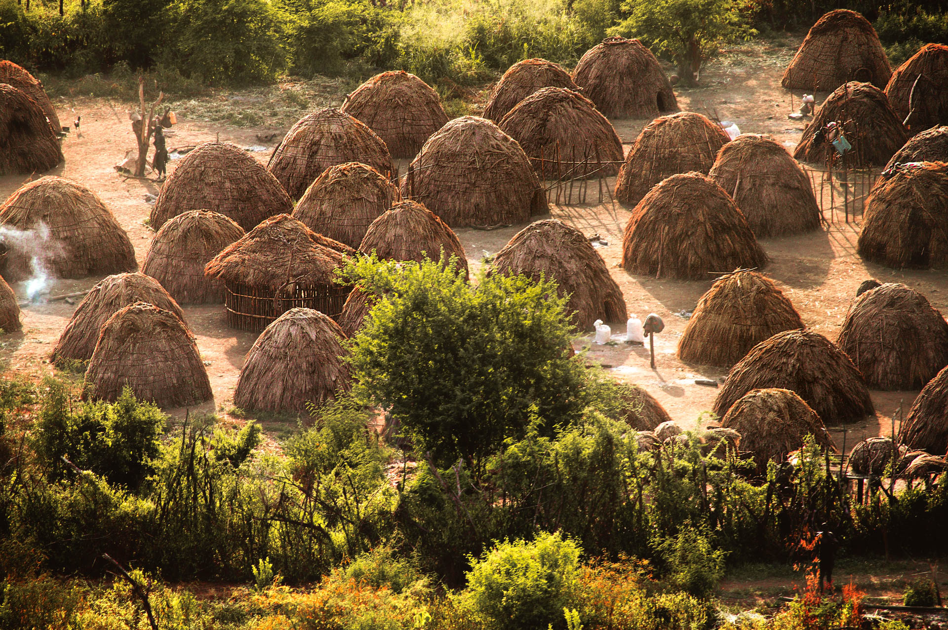 According to an ancient custom, the domed huts of the Mursi village of Komba lie together in a clearing protected by a hedge.