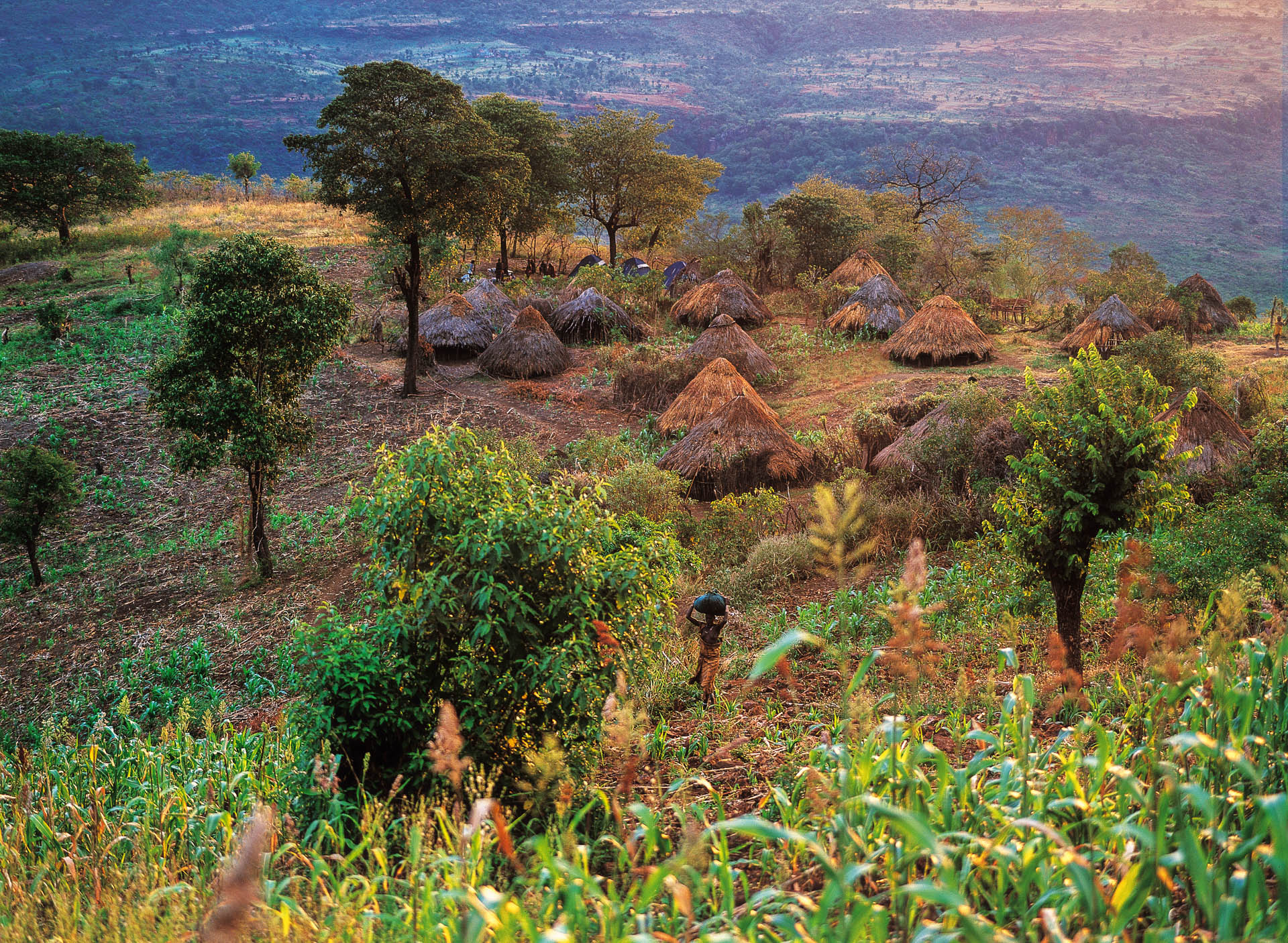 The Surma village of Kormu at dawn, about thirty domed huts.