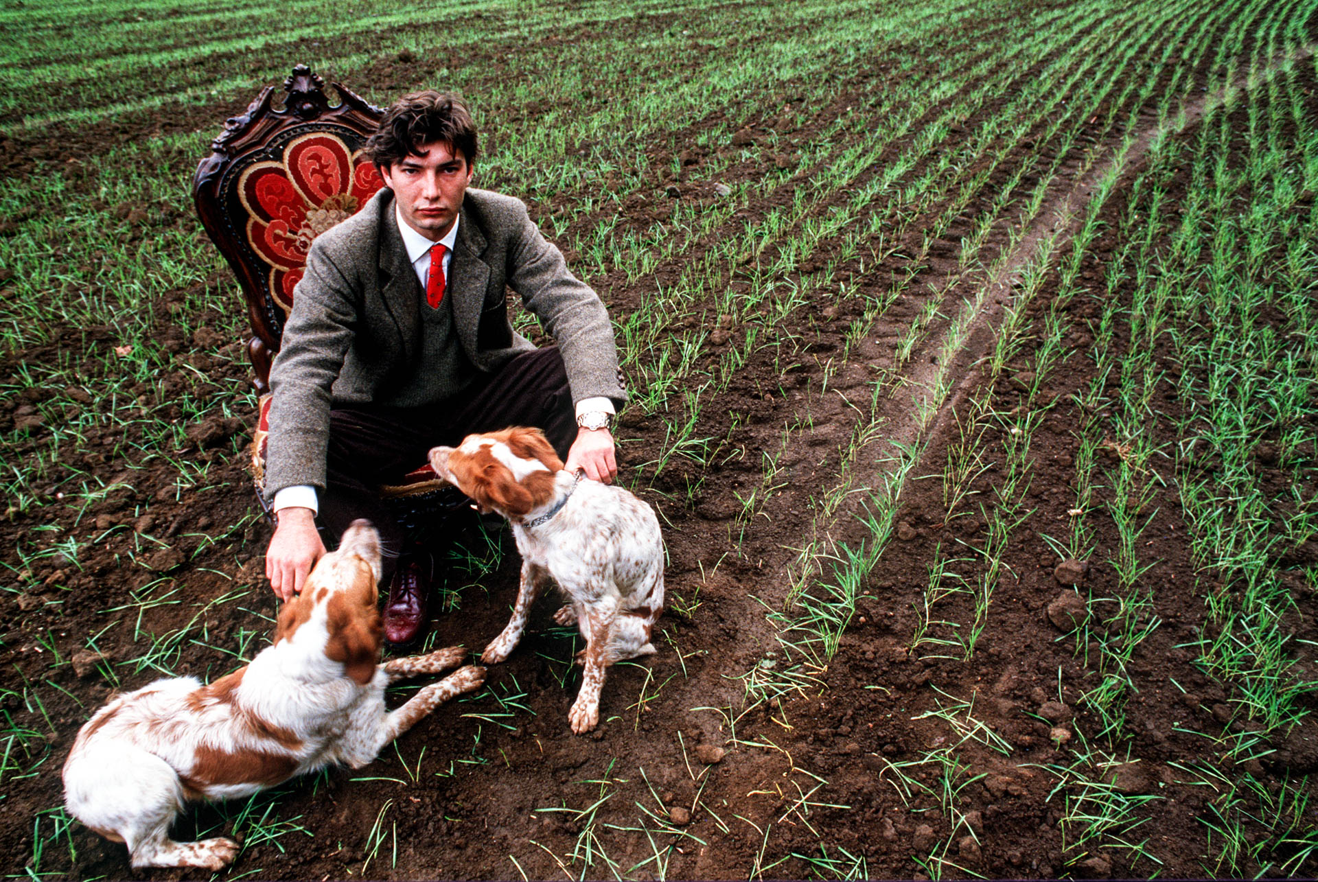 Rome, Italy - October 1987 Prince Odescalchi Federico and his Breton spaniels on his land at Bracciano, near Rome © GIANNI GIANSANTI
