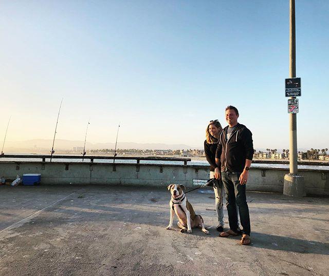 Evening walk with my loves @onepoepuppy and @t.j.pancoast on the Venice Beach boardwalk. Photo credit goes to the amazing @kemoa808  __ #pitbullsofinstagram #pitbulldog #pitbullove
