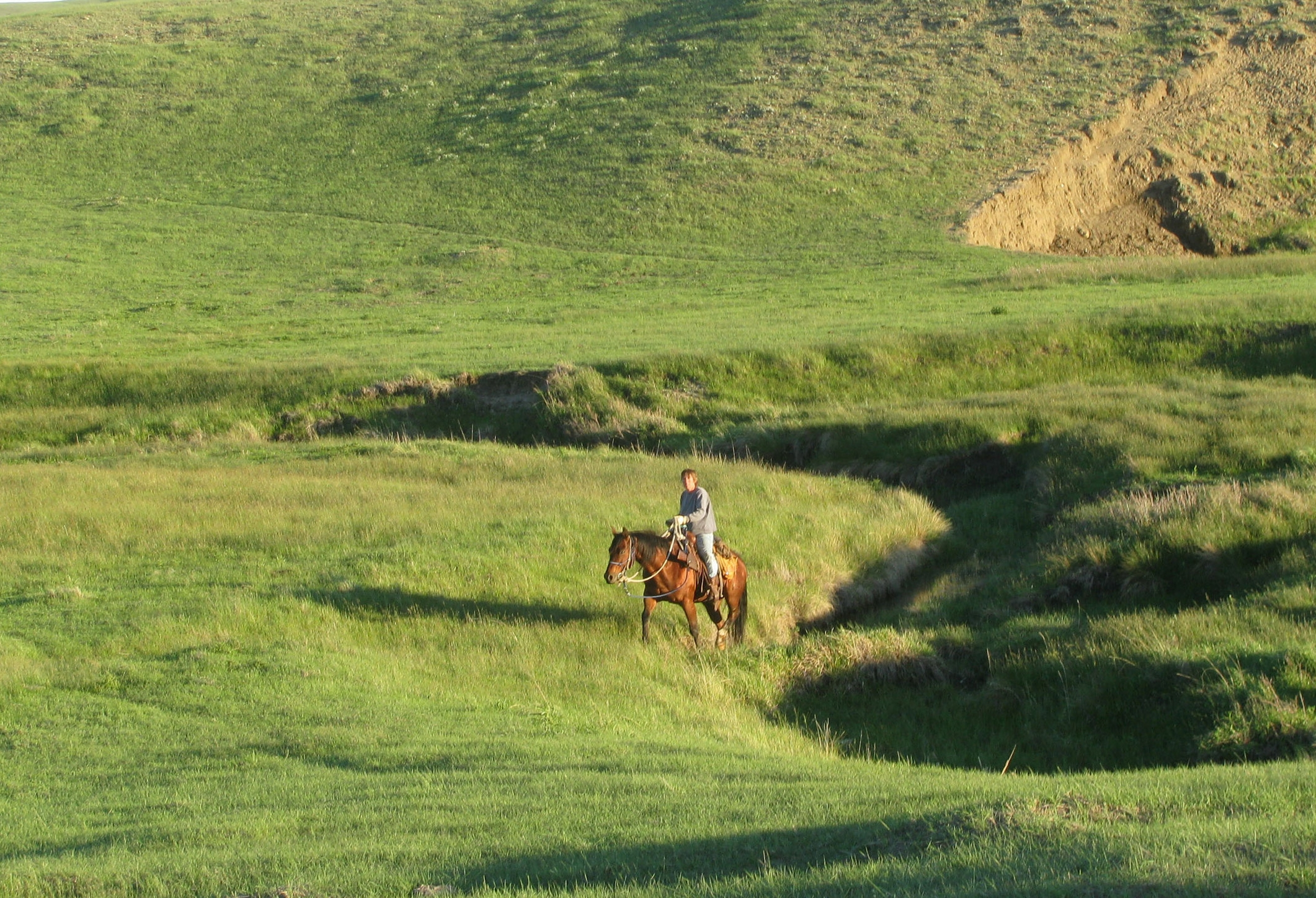 39 Lisa riding through June pasture.JPG