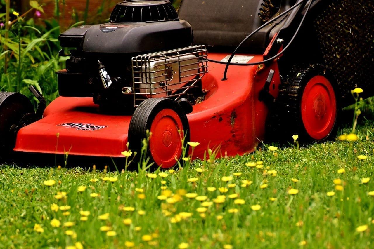 lawn_mowing_1517187928.jpg