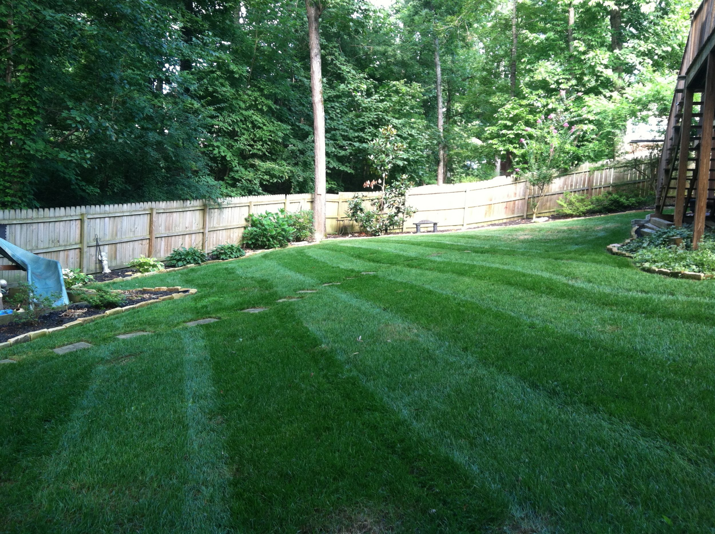 beautiful lawn care backyard by hixson landscape contractors.jpg