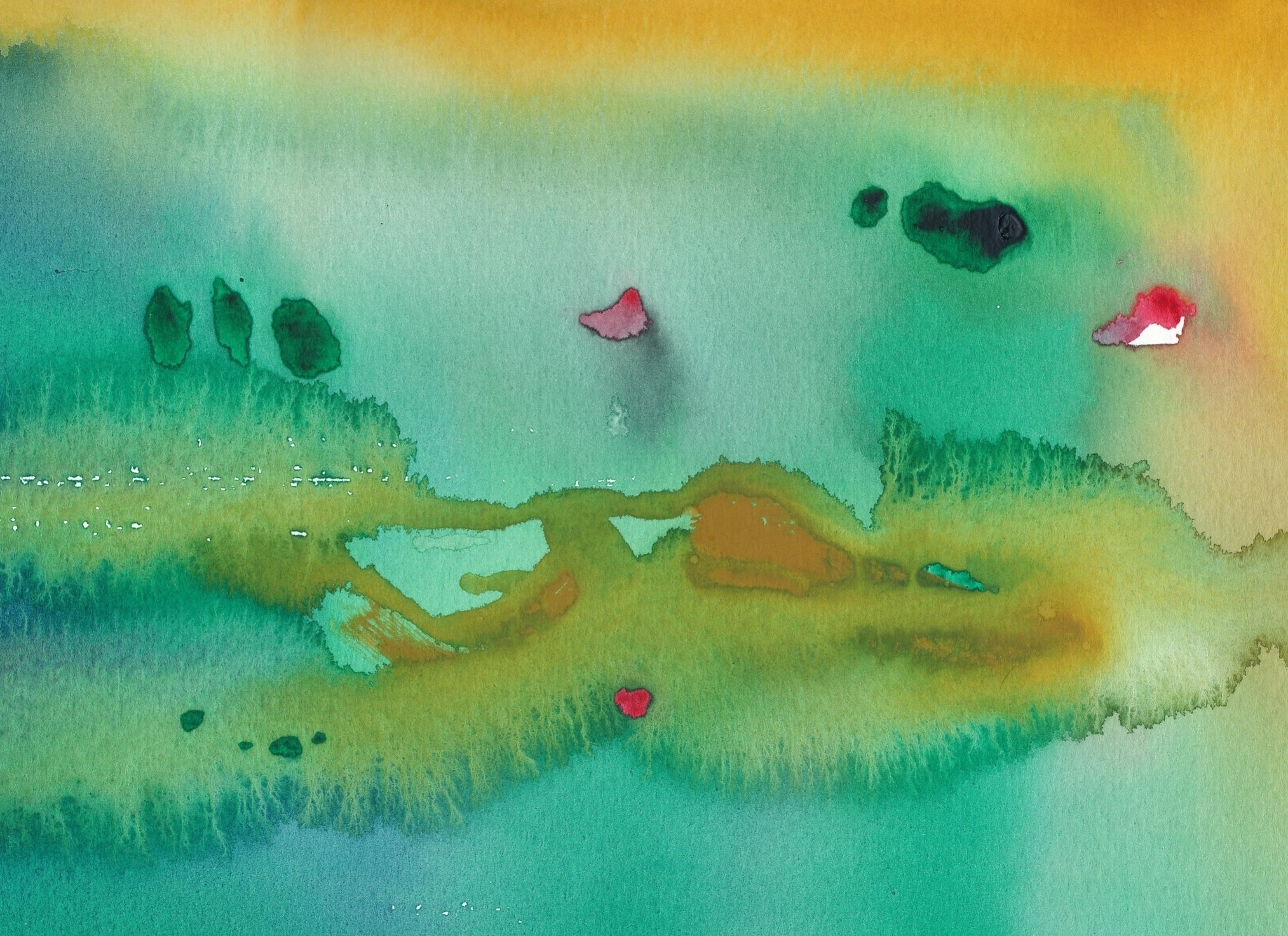 Fascinated by the creative process and the role intuition and imagination play, Debbie uses an intuitive process with watercolors and deep inquiry to help owners and individuals clarify and communicate their vision, values and purpose.