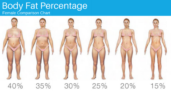 Body Fat Percentage - Female.png