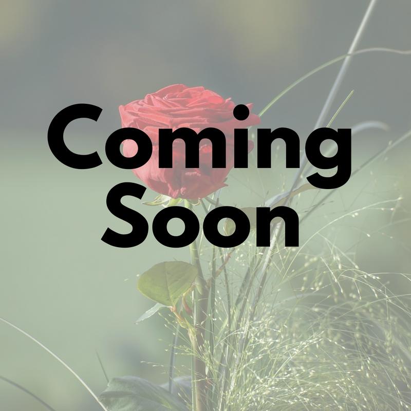 Coming Soon - NAMING.png