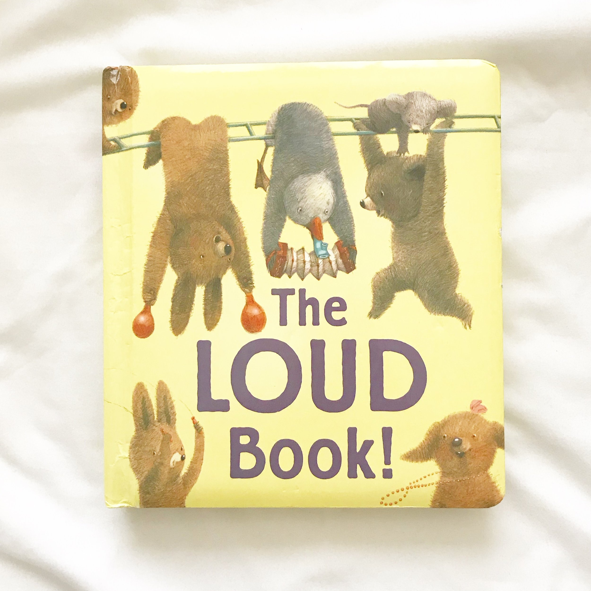 The Loud Book   We love this book and how it talks about good louds, bad loads and the different types of loads.  Fun to open a new discussion with your babe.