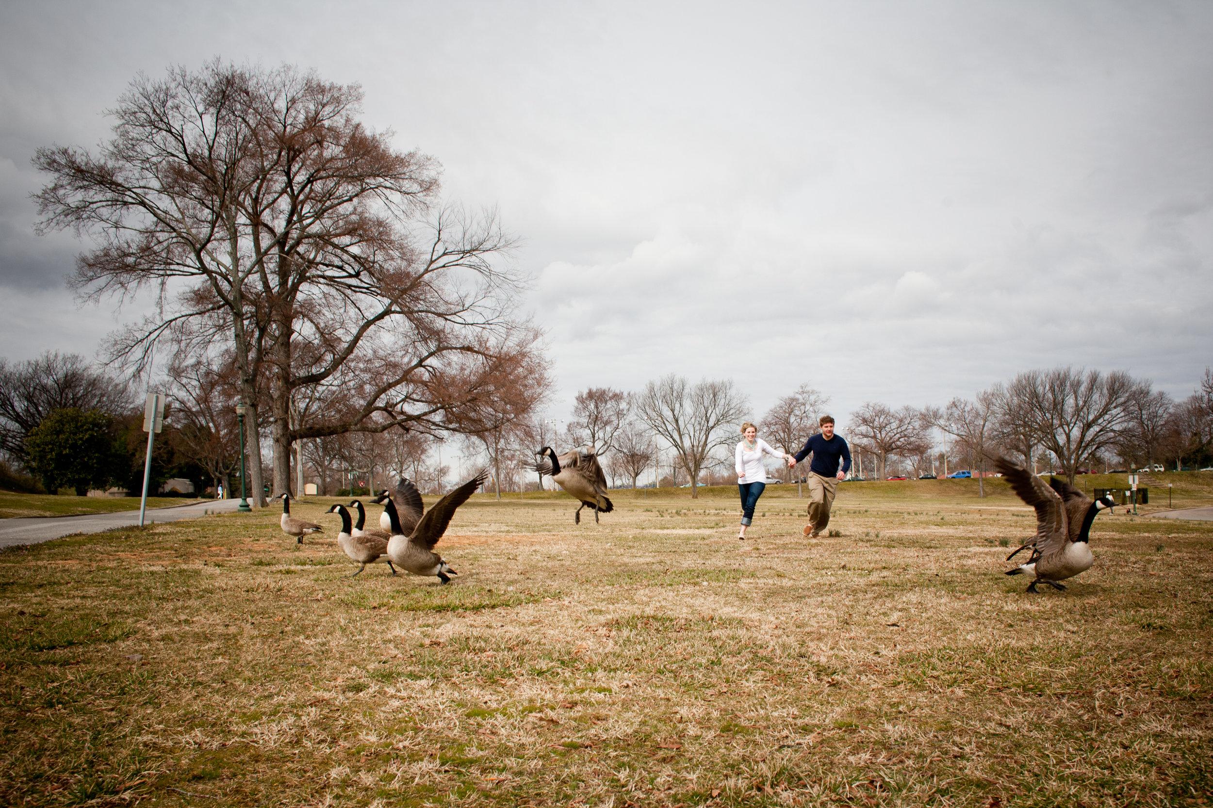 Geese-Byrd-Park-Engagement.jpg