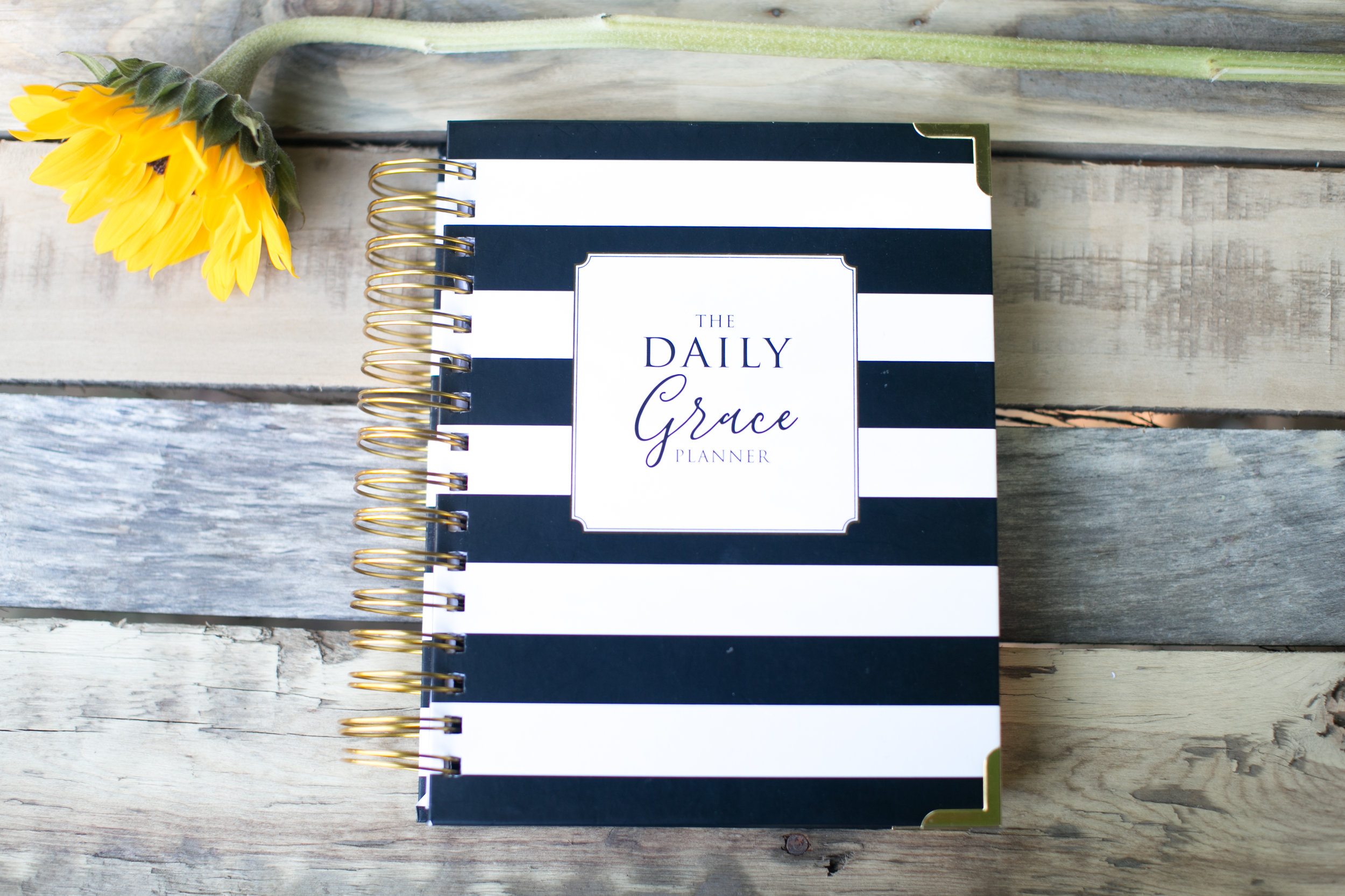 daily grace co planner