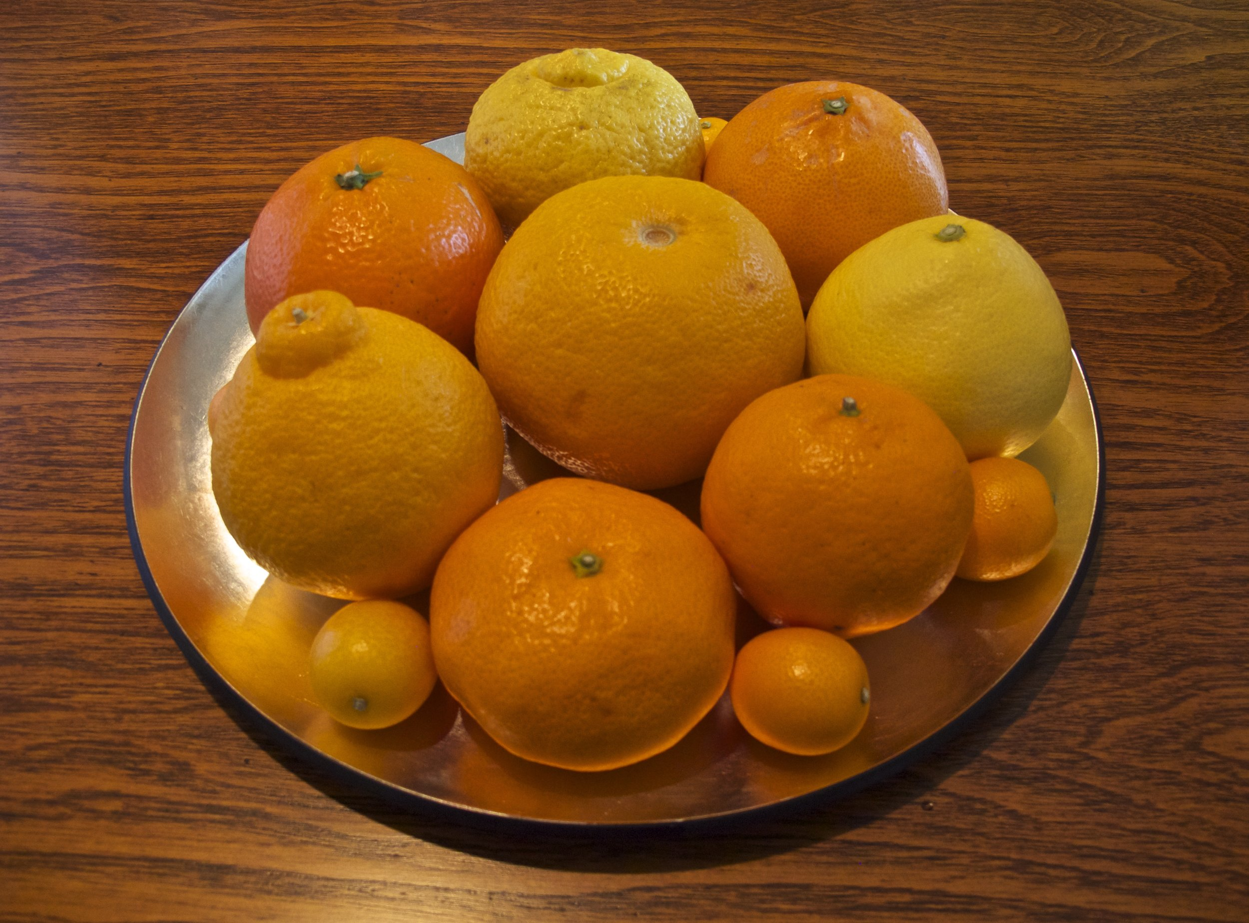 A sunburst colored mix of sweet-sour  mikan , pomelos, and their naturally mutated and commercially hybridized offspring.  Hassaku  in the center is surrounded clockwise from the top by yellow  haruka ,  setoka ,  hyuganatsu ,  ponkan ,  mikan ,  dekopon , and  iyokan , with small  kinkan  tucked into the circle.
