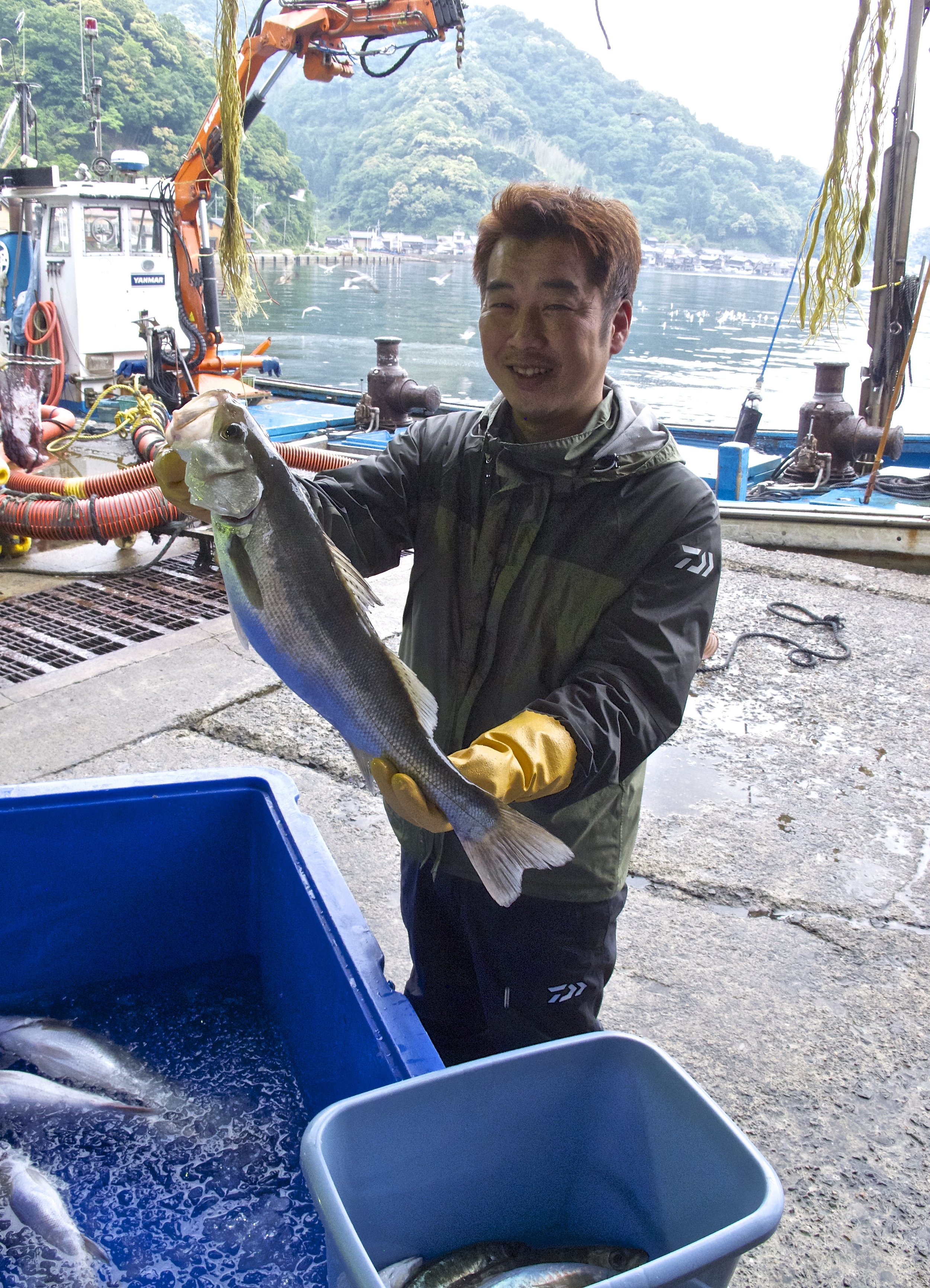 Kengo Kagi holds up a  sawara  (Spanish mackerel) at Ine's cooperative fish market, the  hamauri,  that takes place every morning on the beach at the center of the village.  Sawara  is considered the best kind of mackerel in Japan because of its size and succulent white flesh.