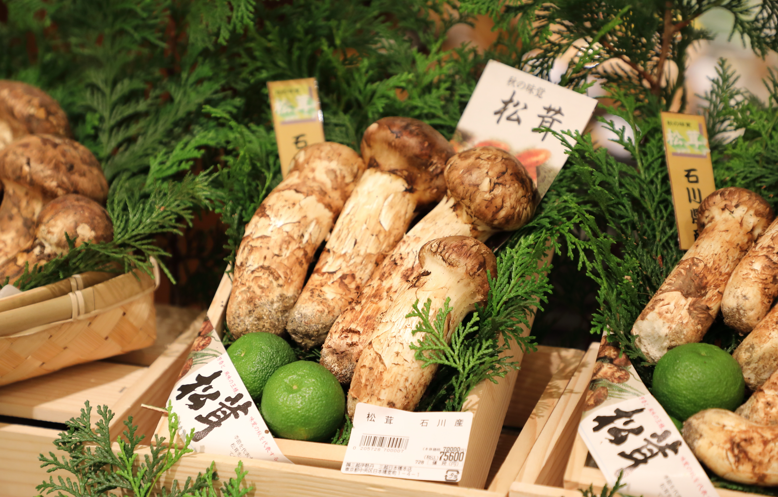 The role that a few drops of freshly-squeezed  sudachi  juice plays in bringing out the delicate earthy flavors of expensive  matsutake  mushrooms is so important that the two foods are almost always sold together.