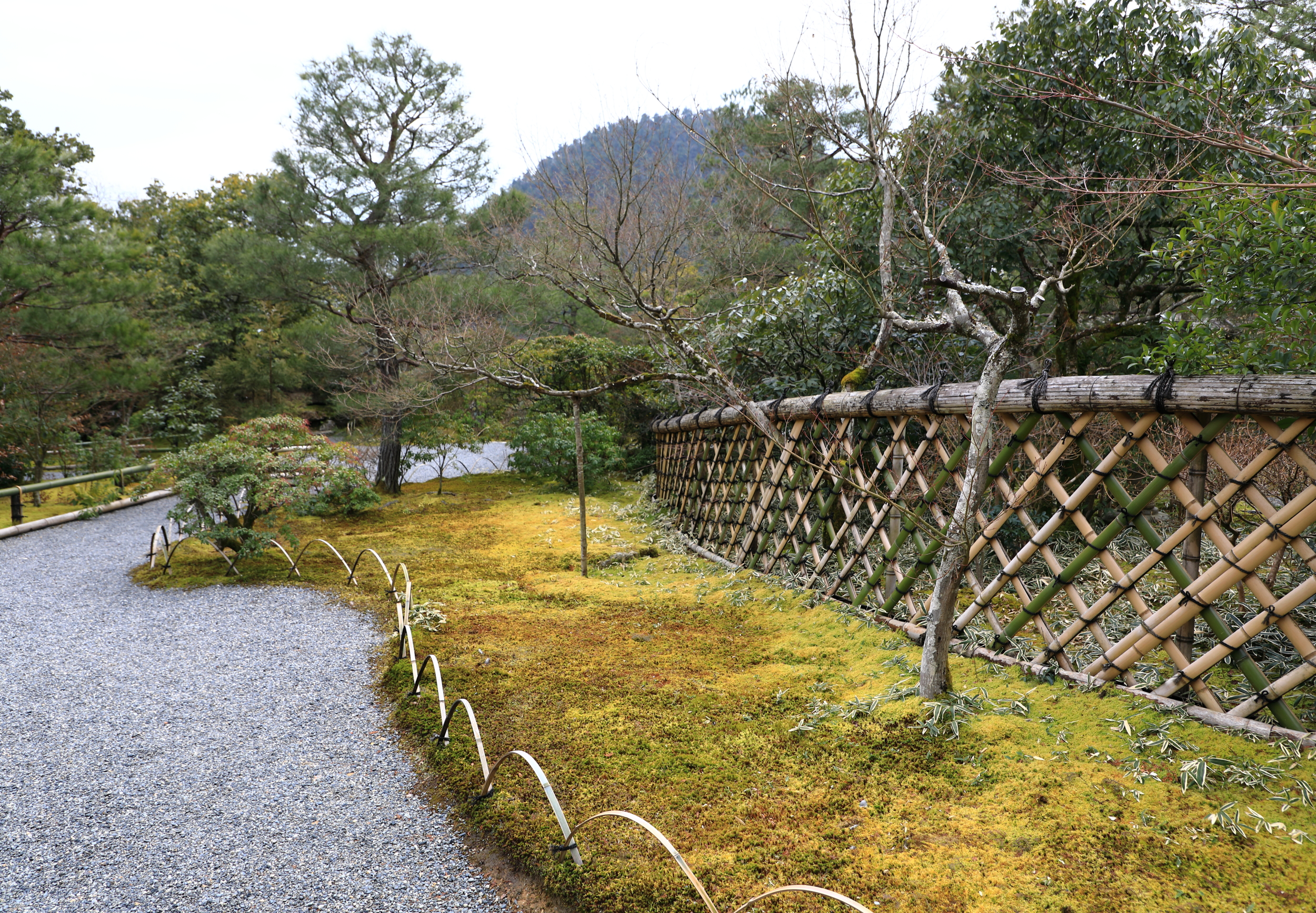 "The famous woven bamboo fence in the garden with Mt. Takagmine in the distance. All three key elements of Edo-era stroll garden design are at work here: movement along the diagonal, ""hide-and-reveal,"" and ""borrowed"" scenery."