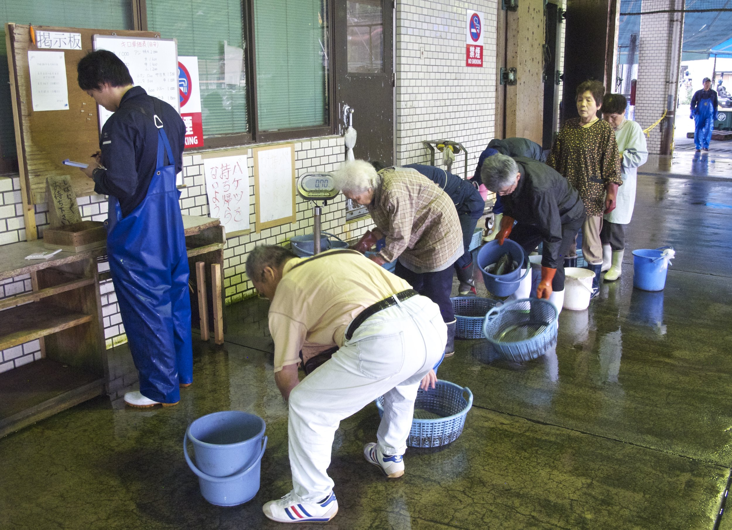 Ine's residents have first crack at selecting fish from the fisherman's daily catch at the informal  hamauri  beach market, getting the fish for free or ¥100 per bucket-full.