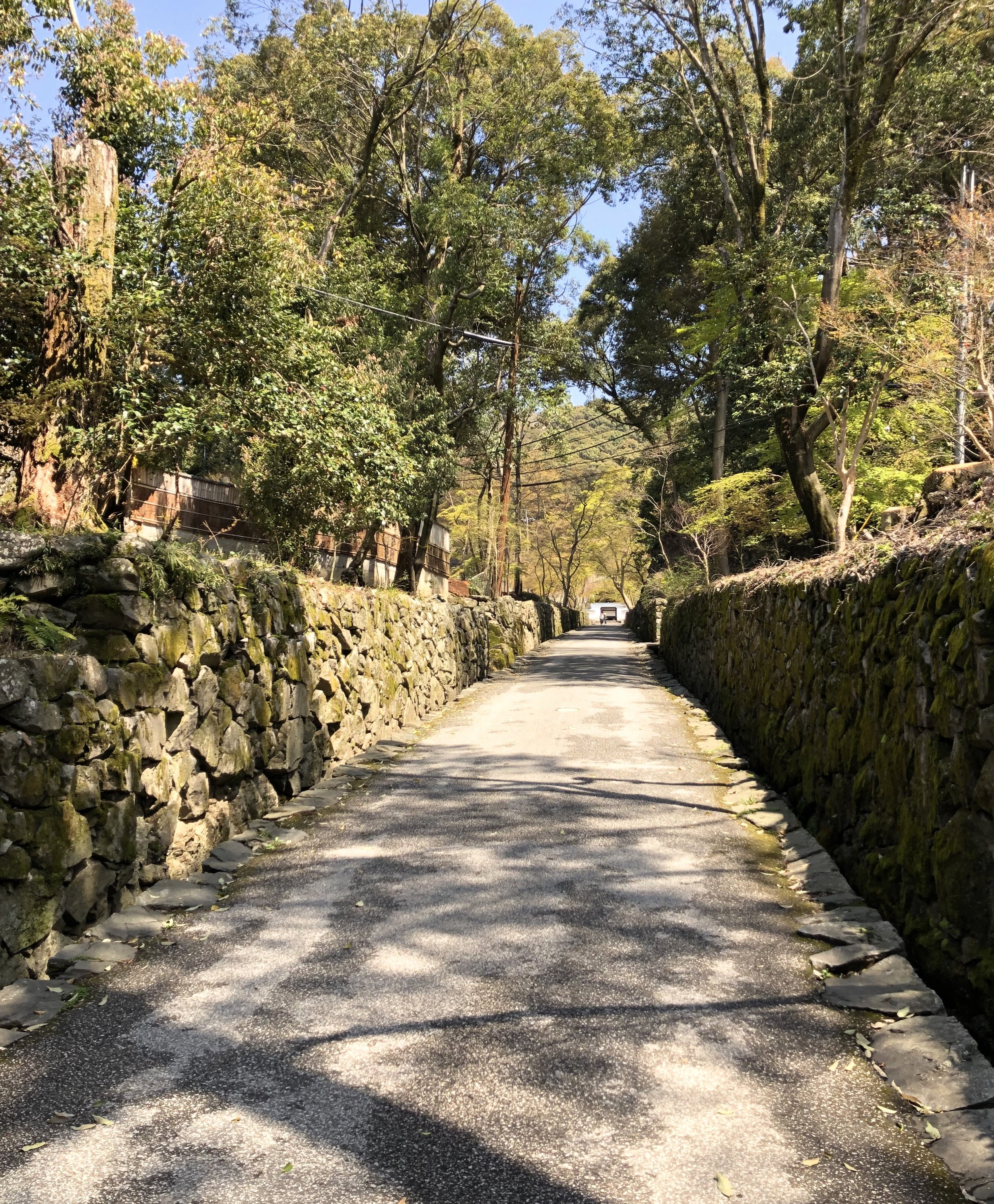 The long walk from the first gate to Kosho-ji is the start of a comtemplative journey to the temple.