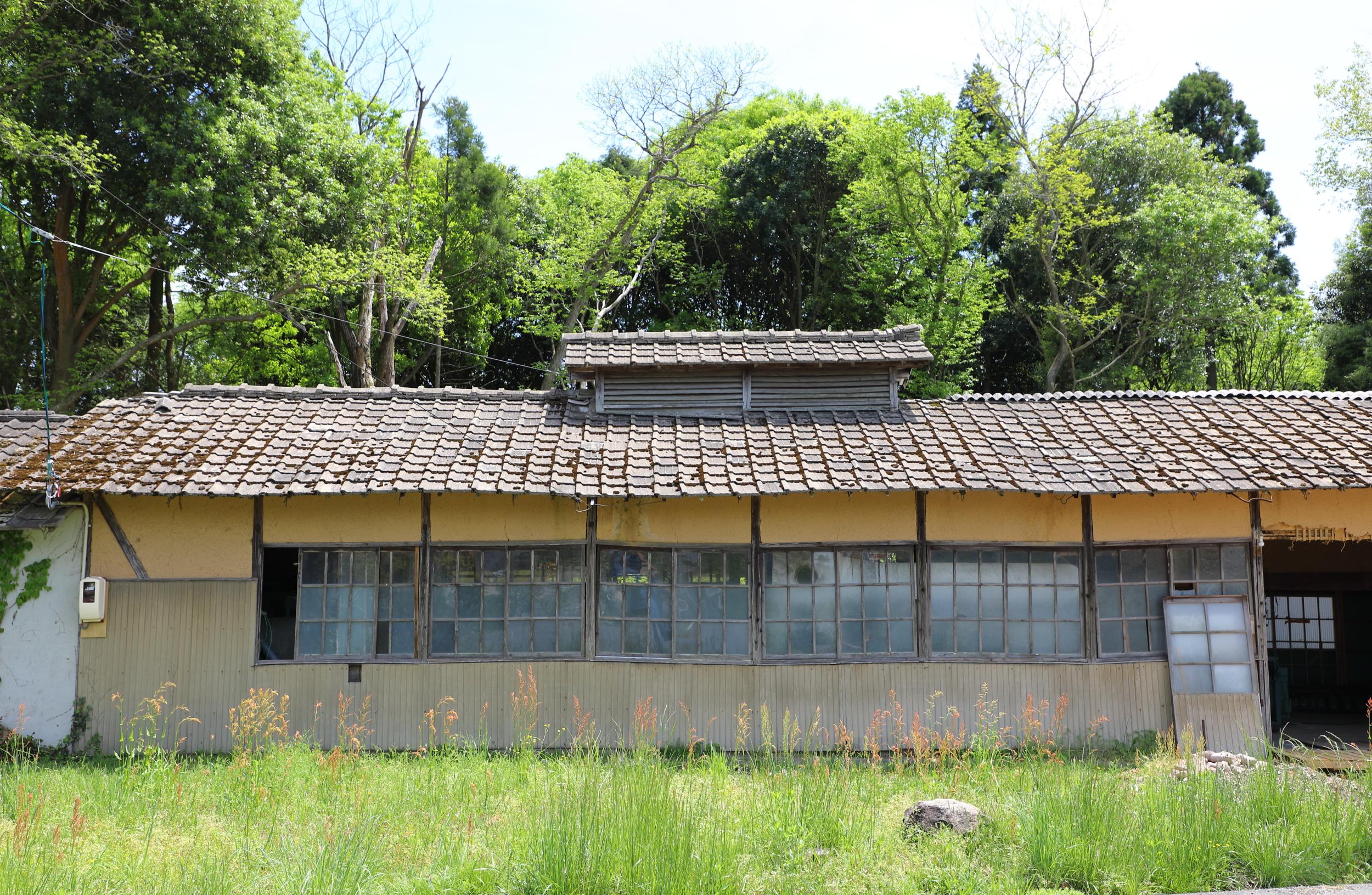 Tea Factory Gen.