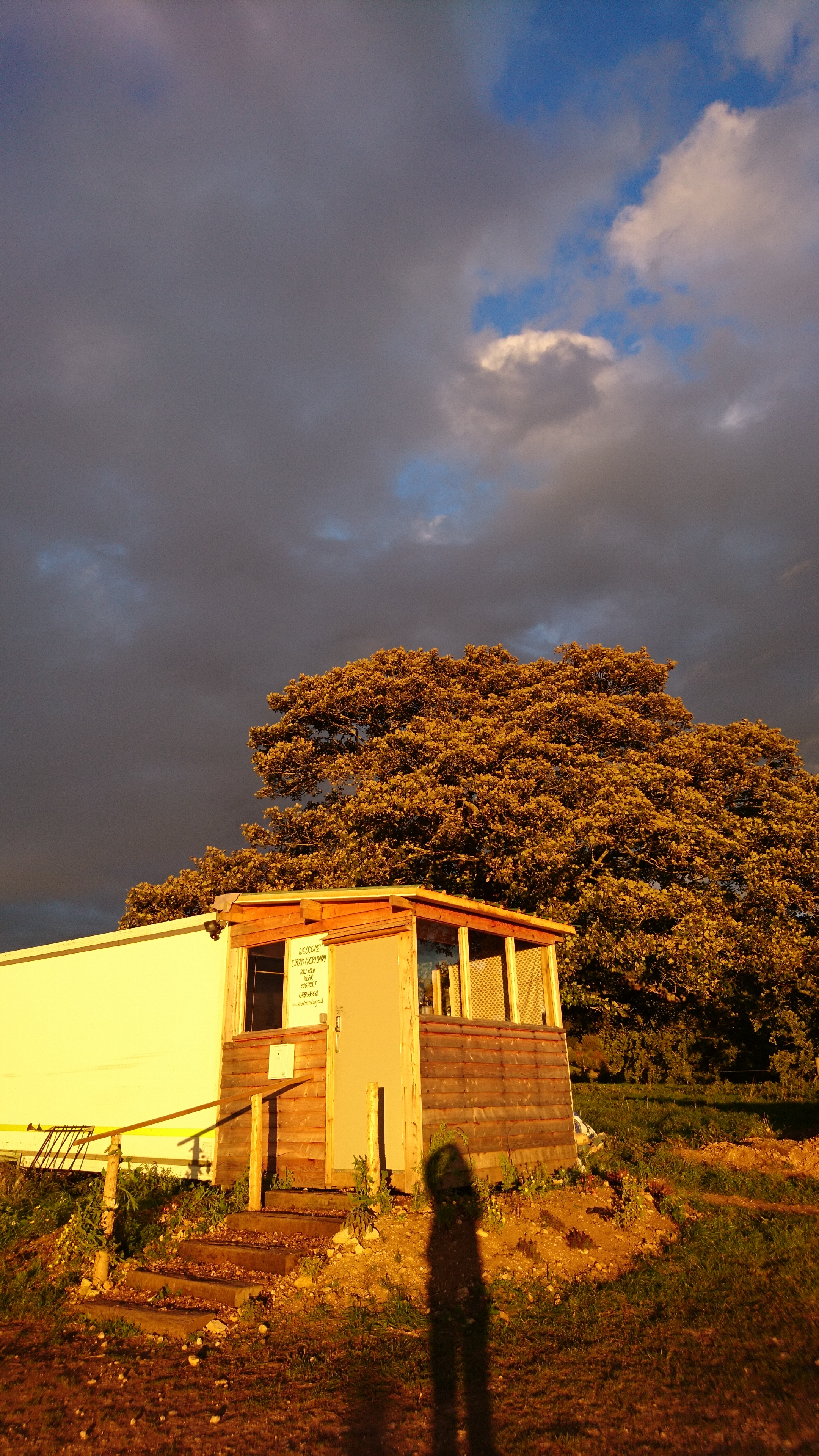 Our dairy in the setting sun