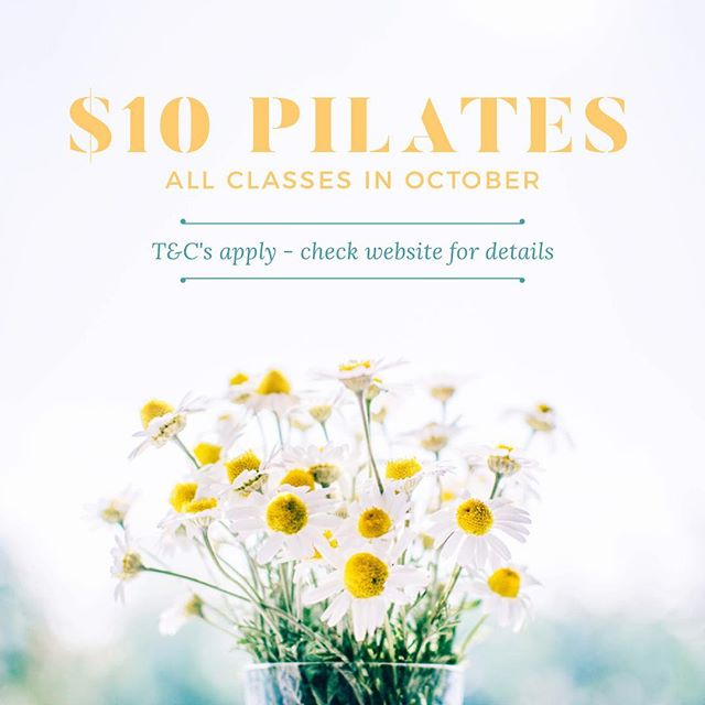 Spring is here! It's almost shorts, singlets and ☀️time - join us all October for $10 classes.  T&Cs apply, check website for details. Link in Bio