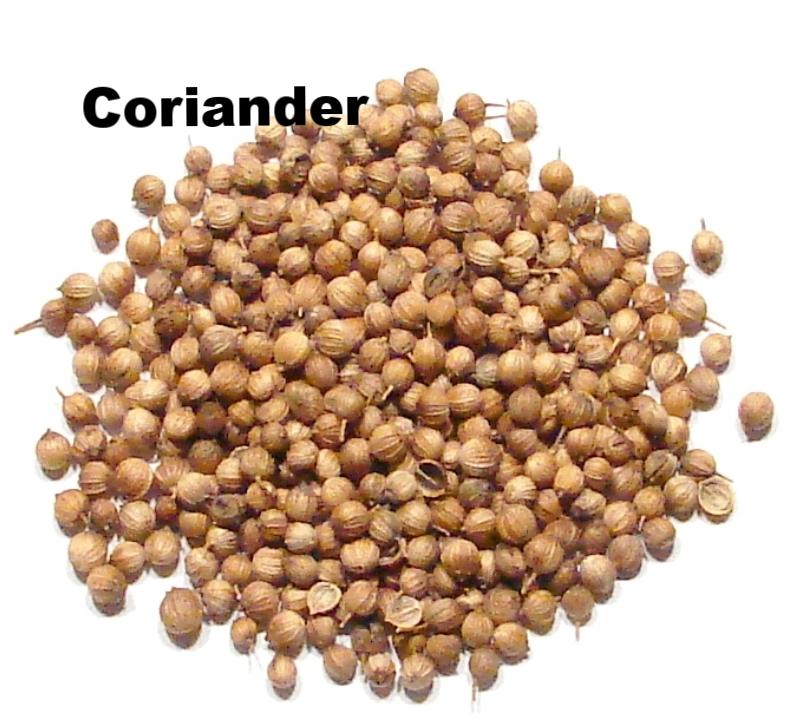 Coriander-Whole-DSC.jpg