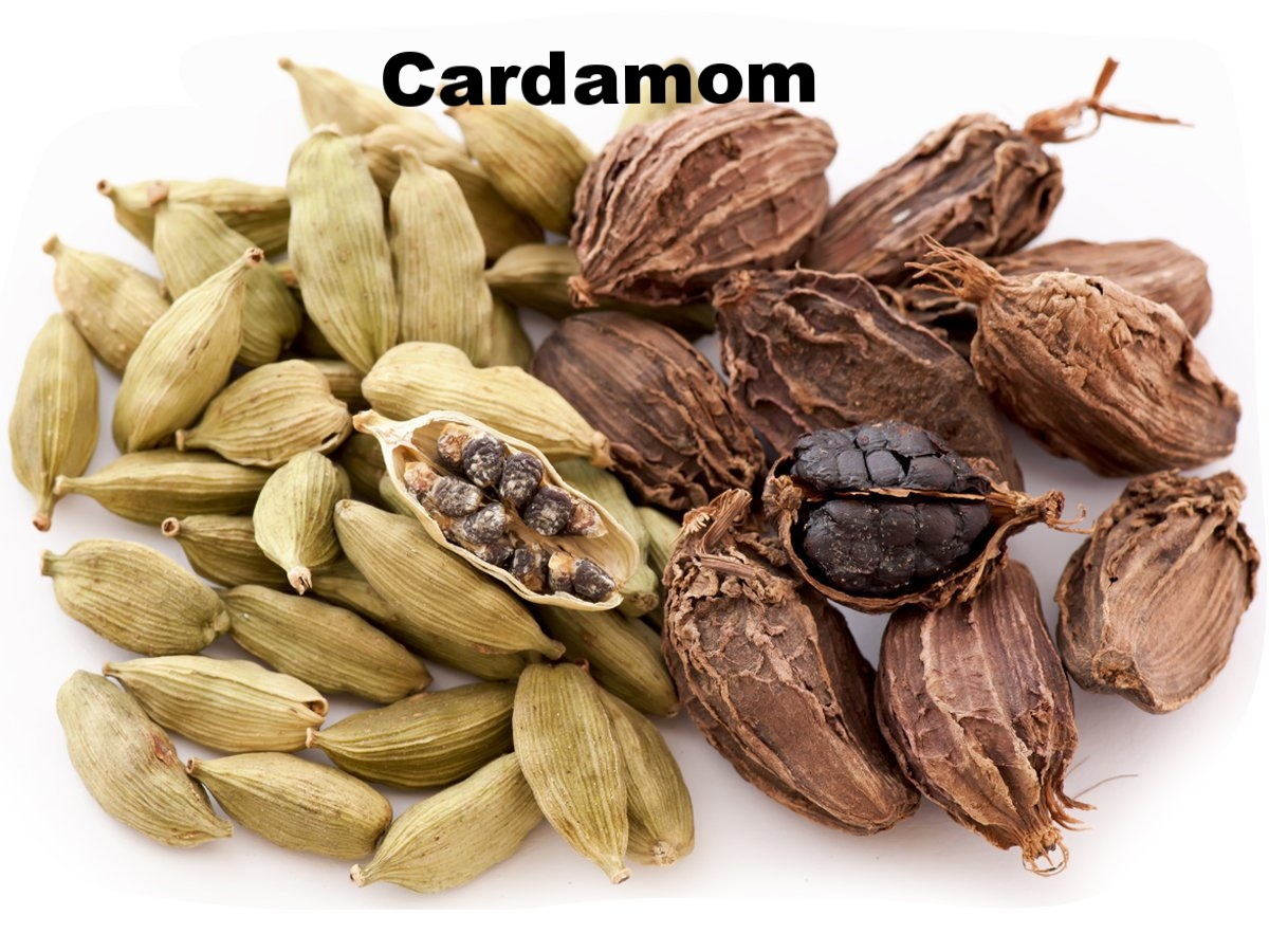 Cardamom11.jpg