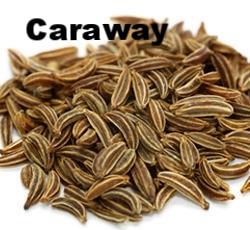 caraway-seeds-250x250.jpeg