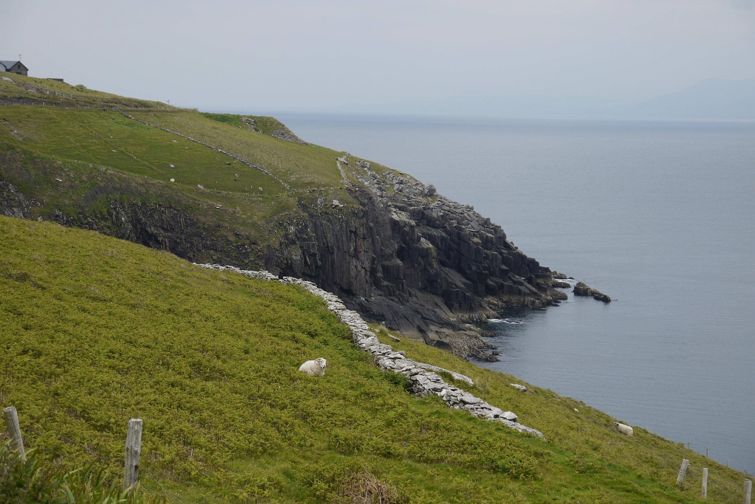 Ireland_ - 190.jpg