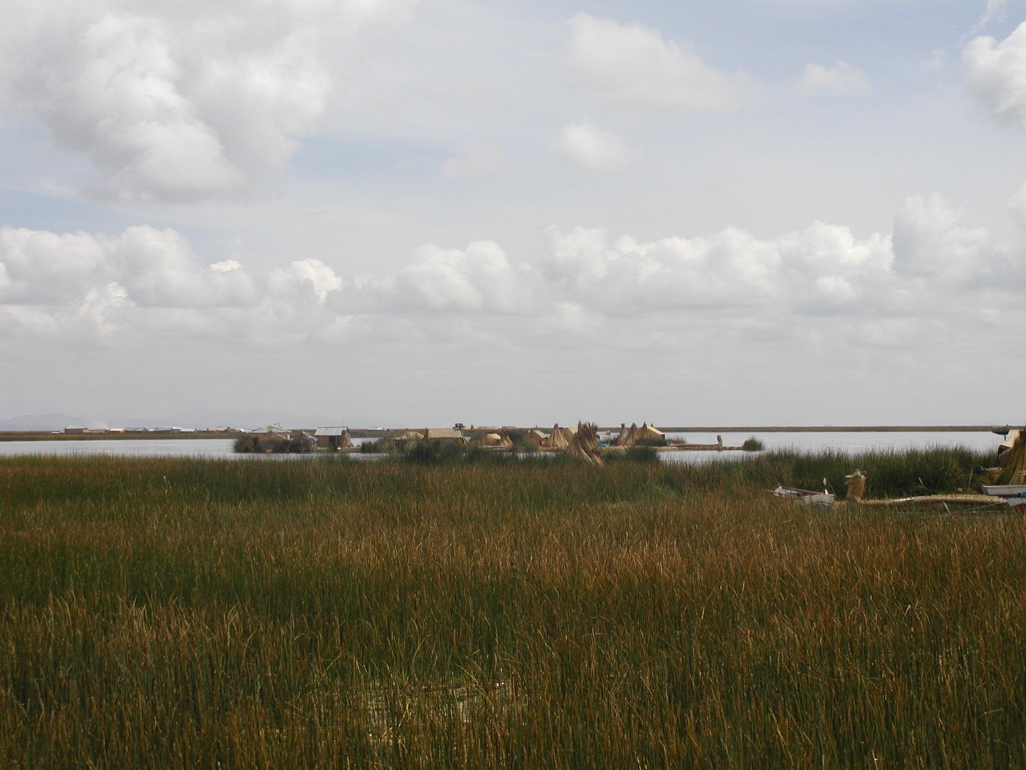 Reed Island in Lake Ti....jpg
