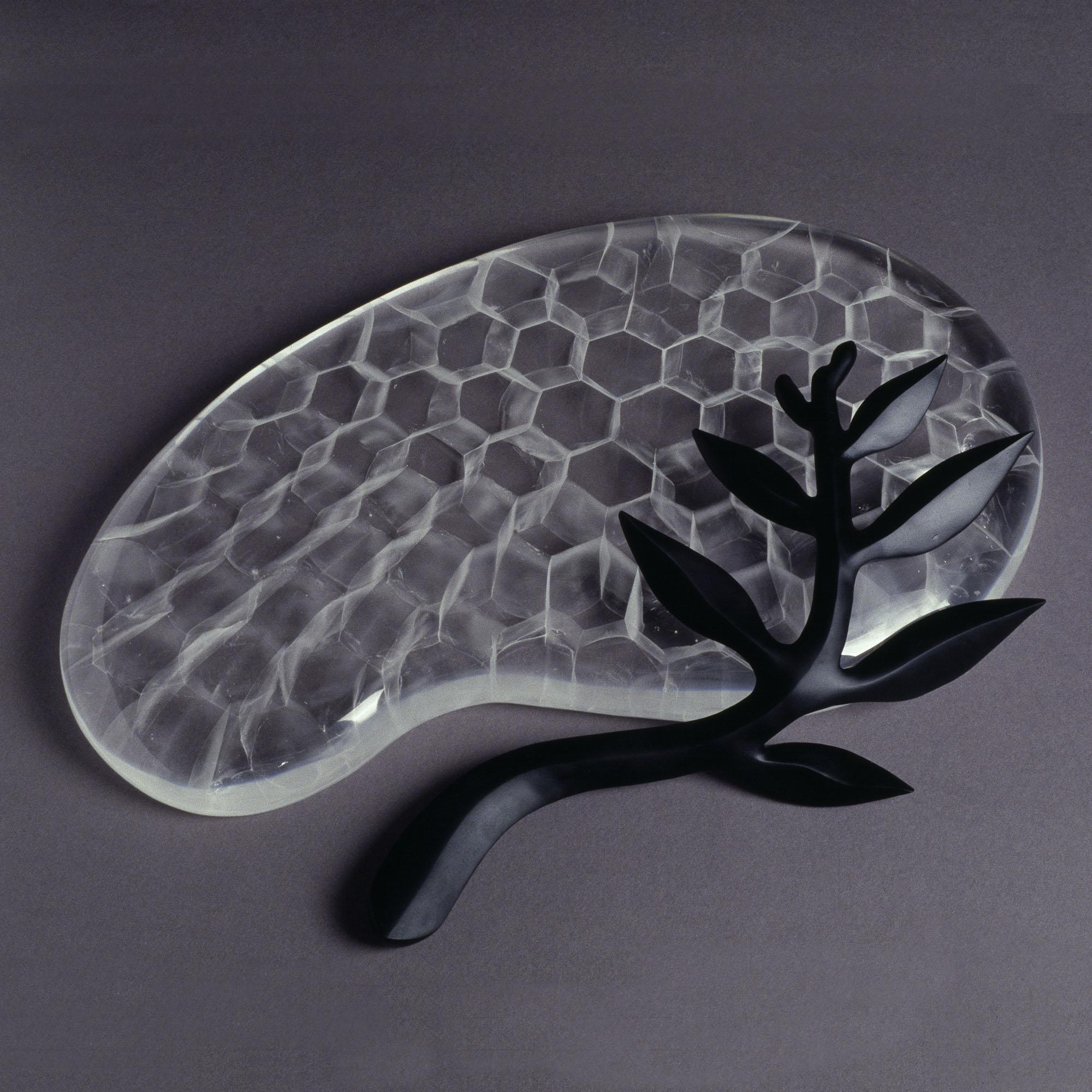 Evolution II | 2002 | Angela Jarman