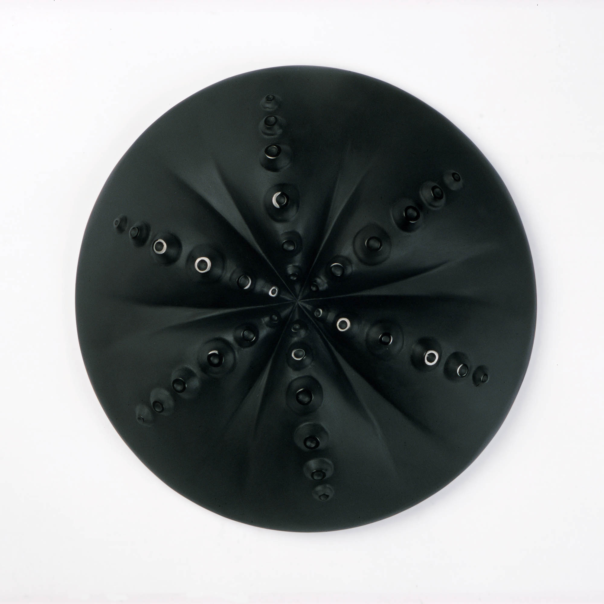 Discus | 2007 | Angela Jarman