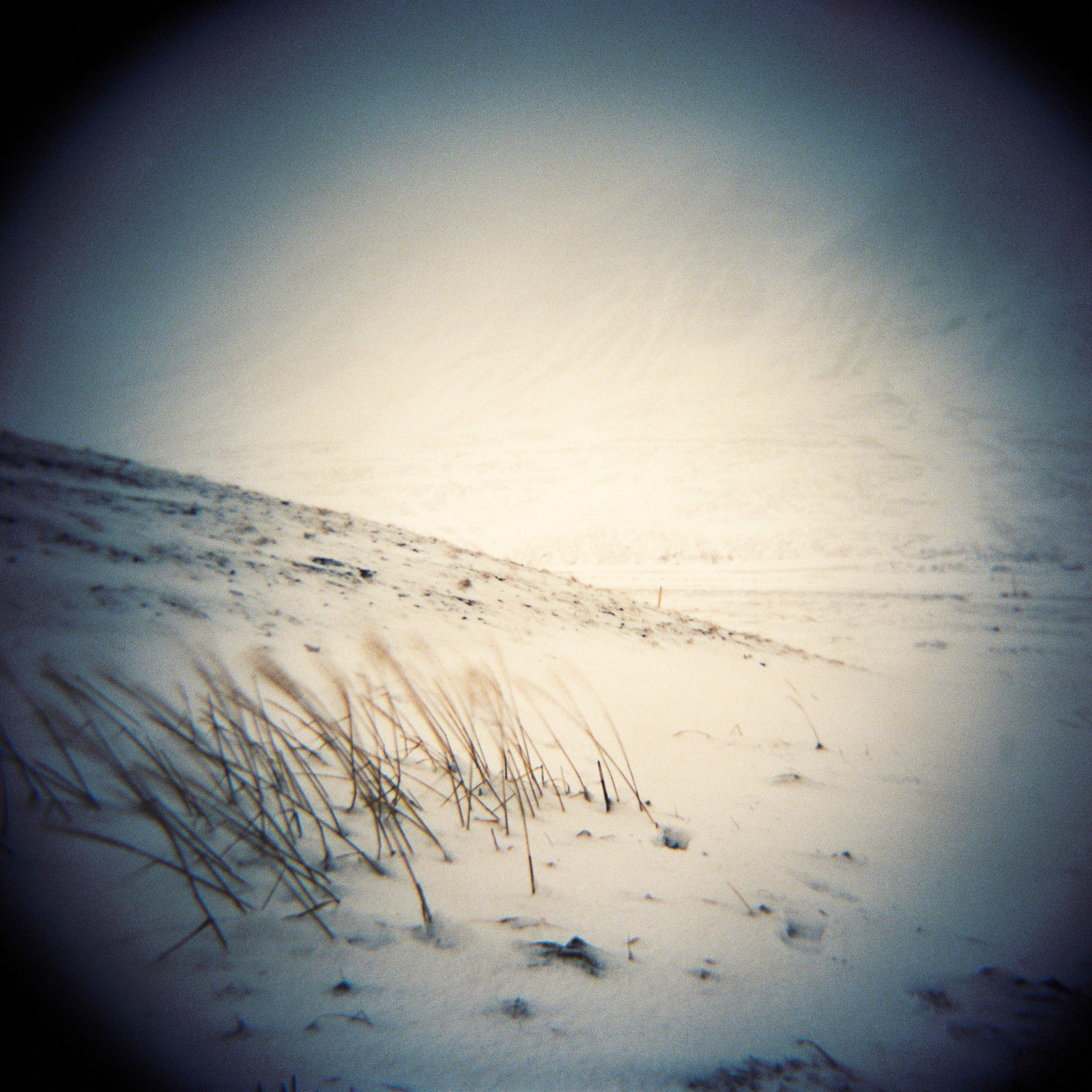 Holga Snow-3.jpg