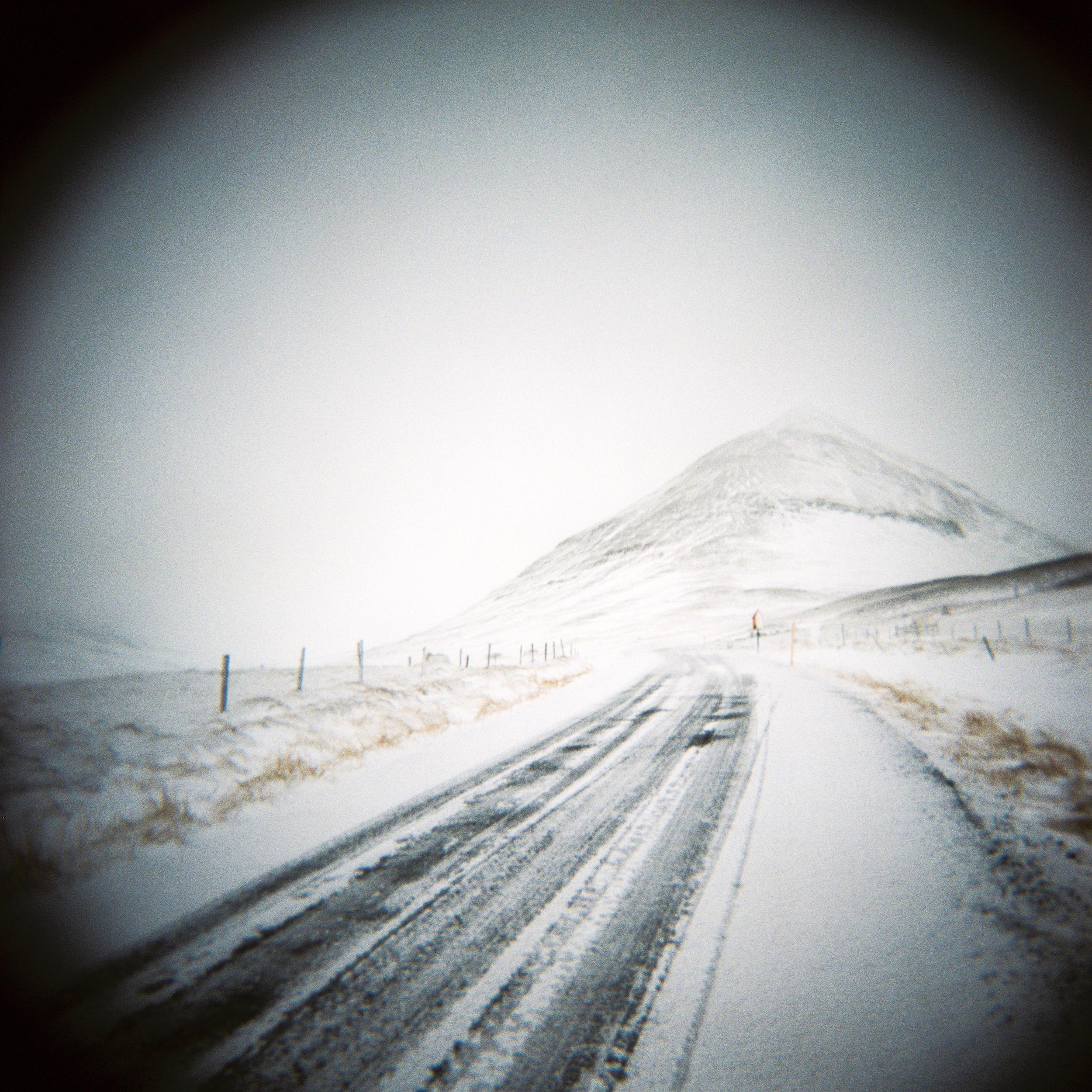 Holga Snow-4.jpg