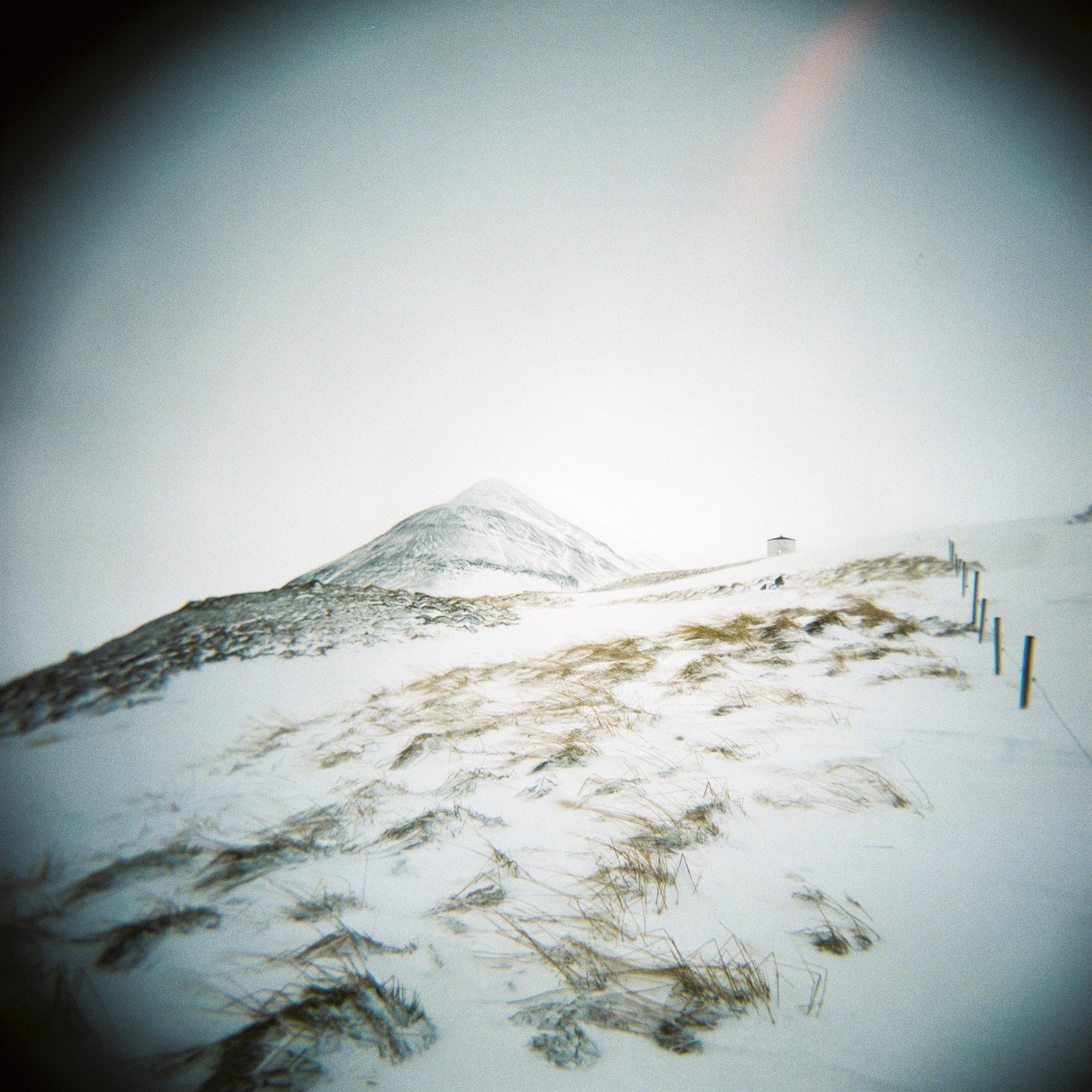 Holga Snow-7.jpg
