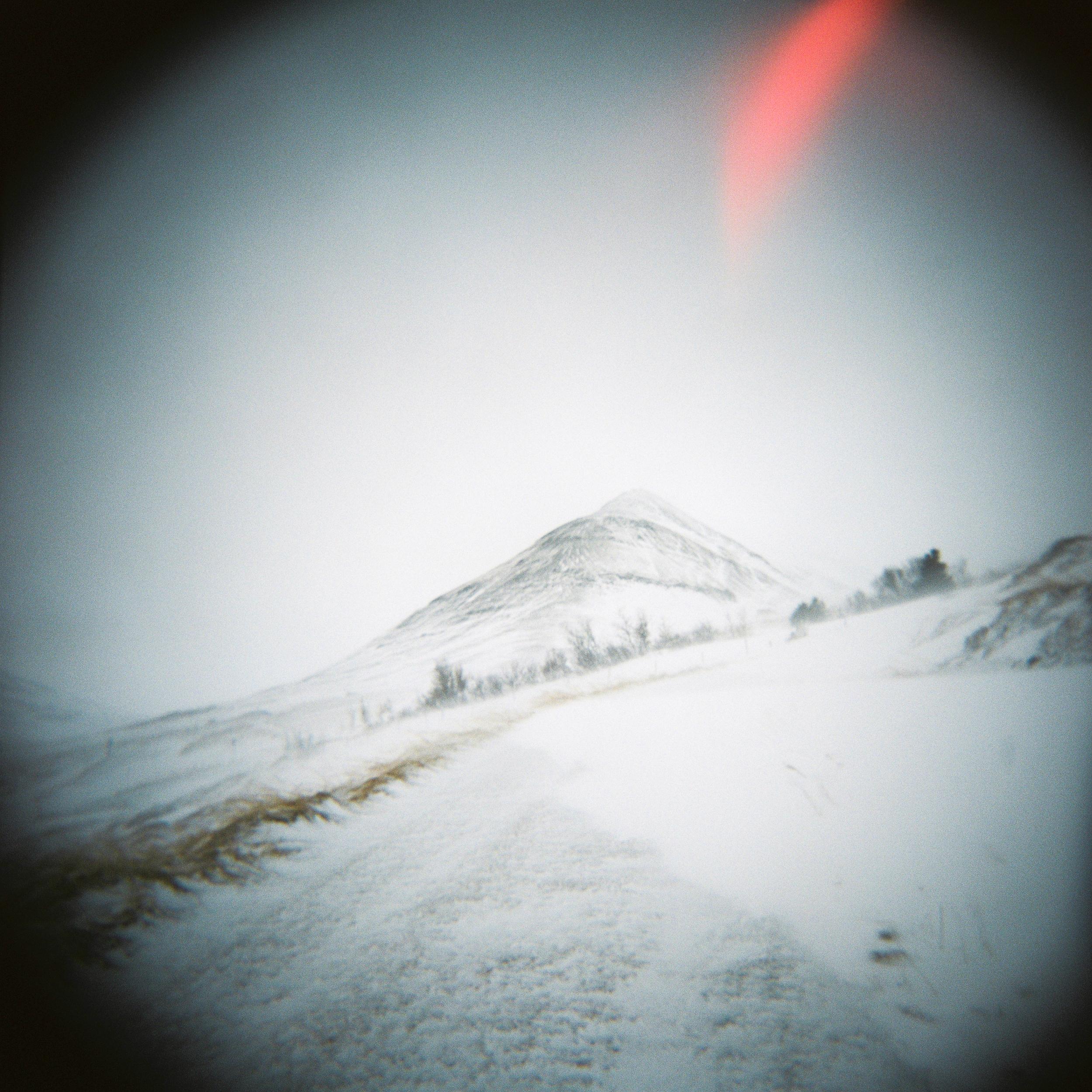 Holga Snow-5.jpg