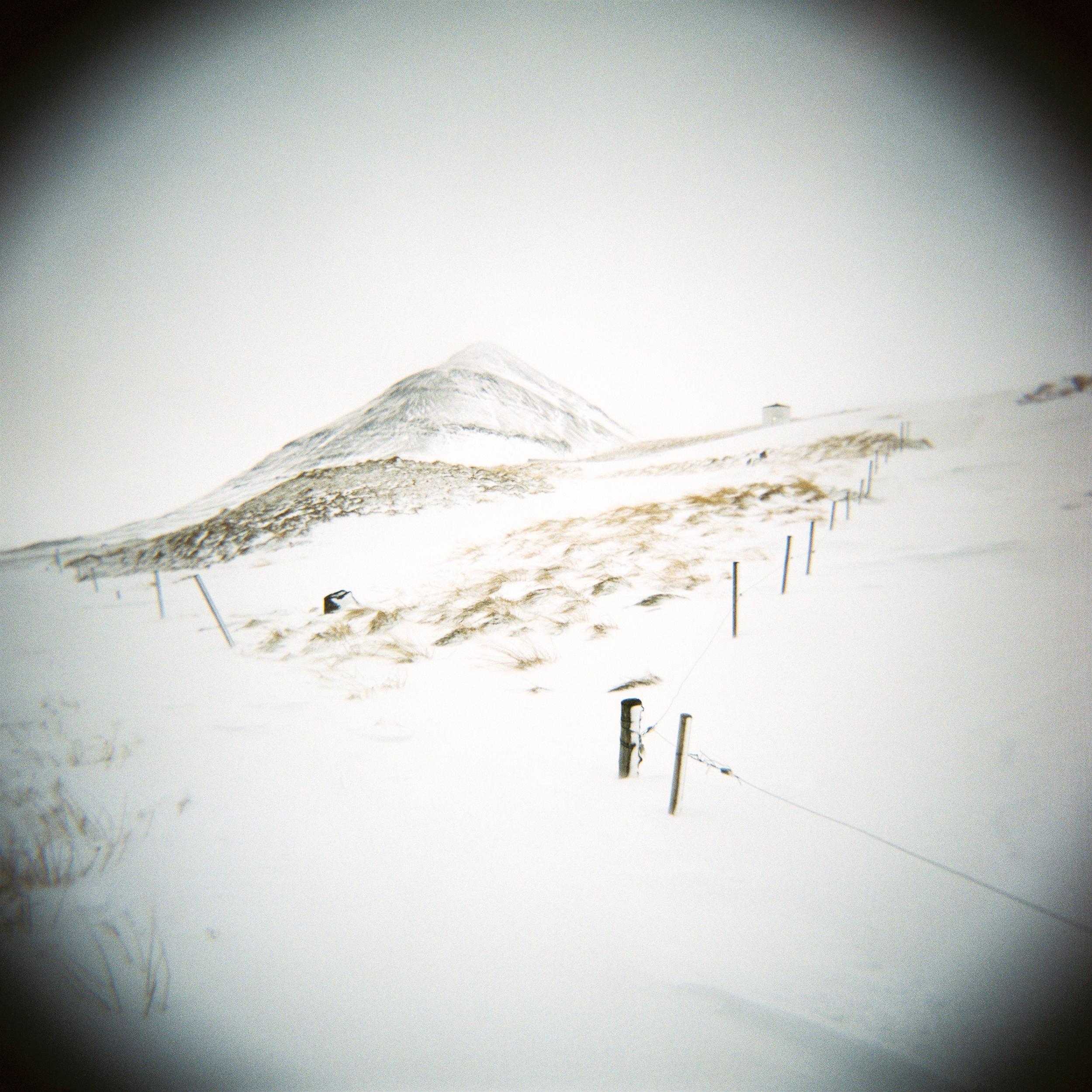 Holga Snow-8.jpg