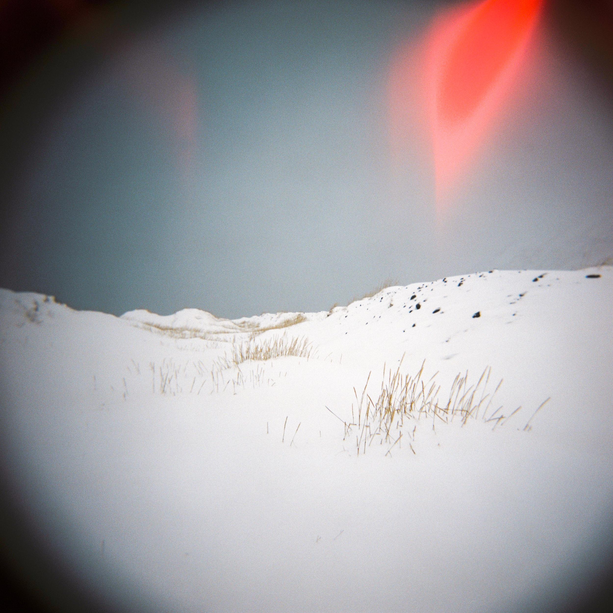Holga Snow-13.jpg