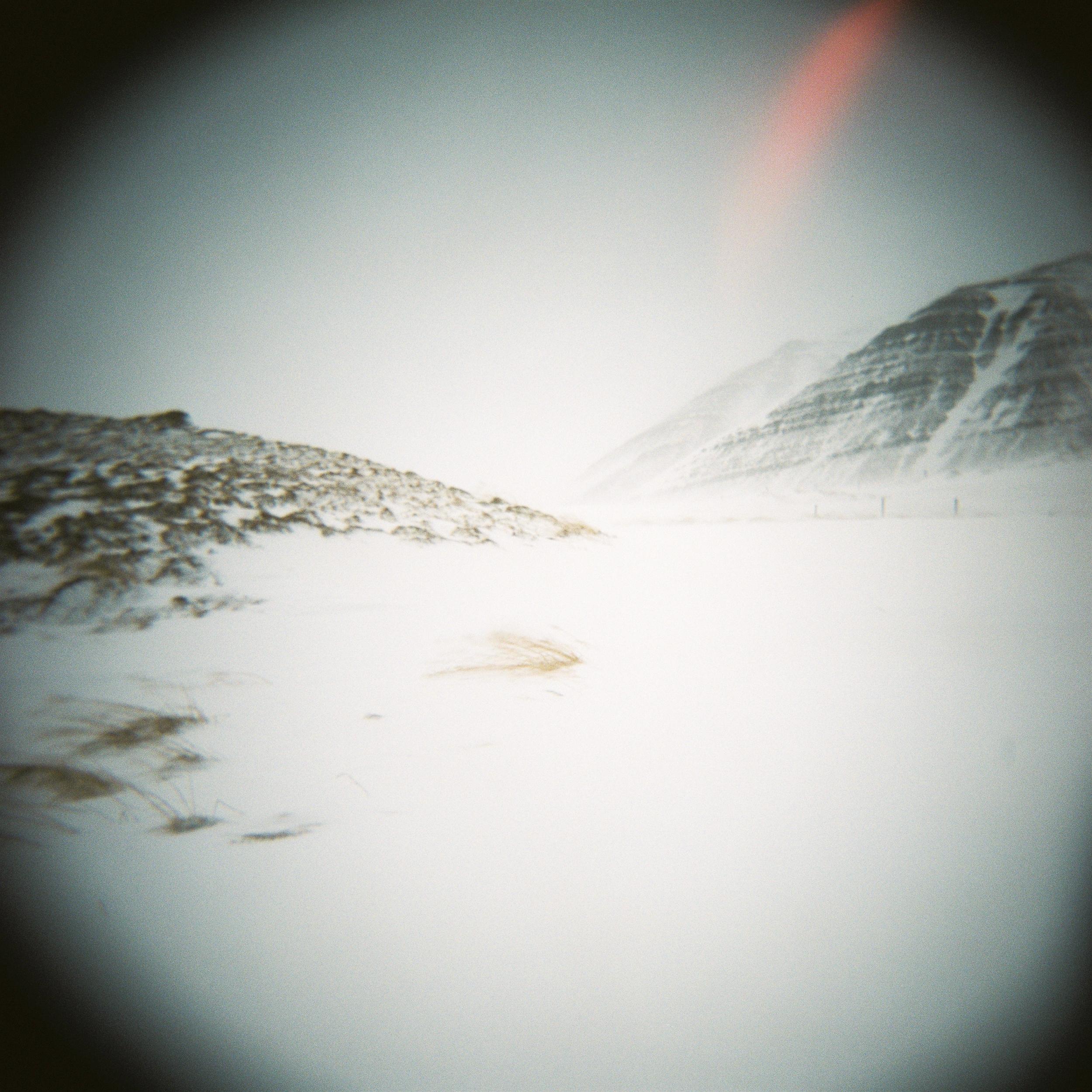 Holga Snow-16.jpg
