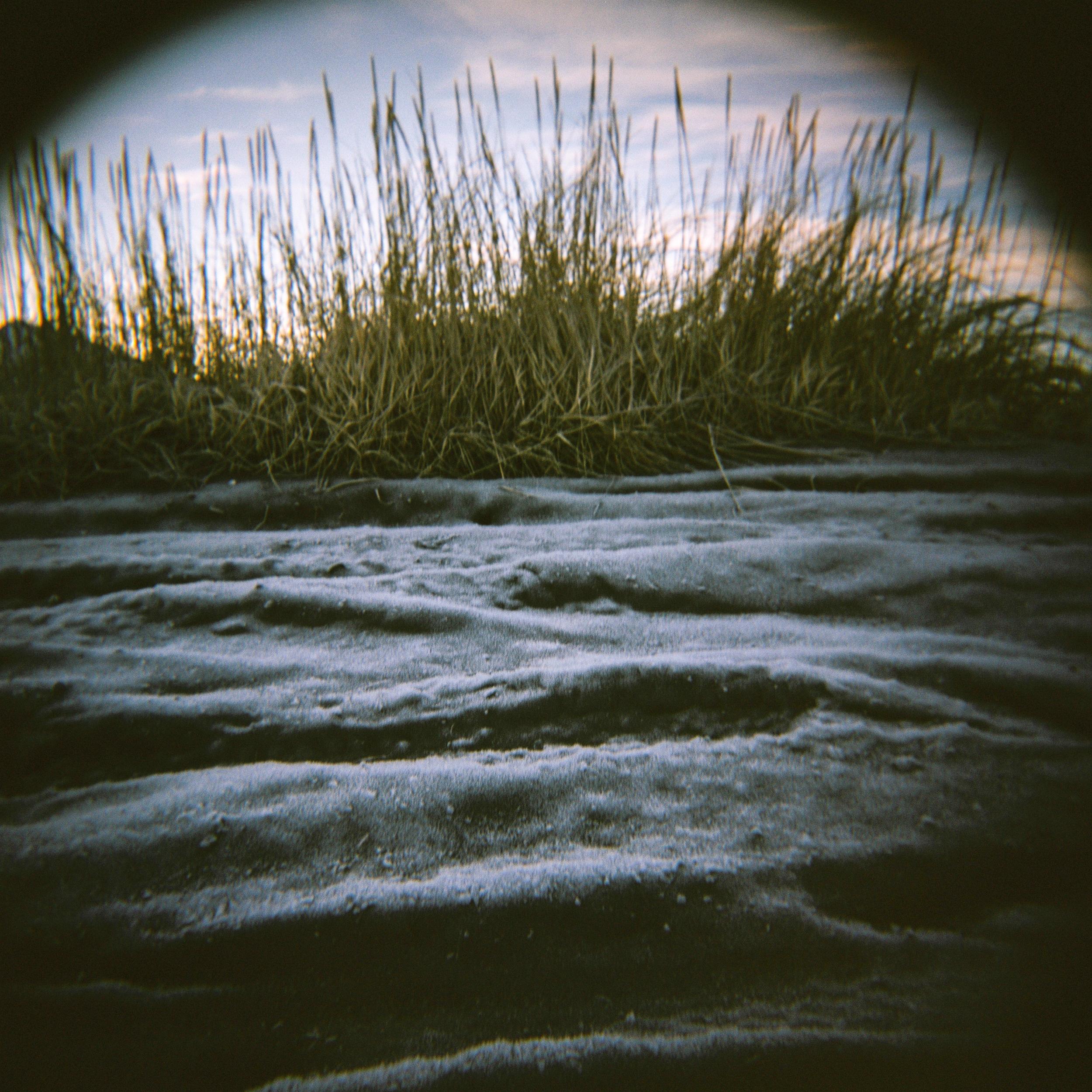 Holga Landscapes-21.jpg