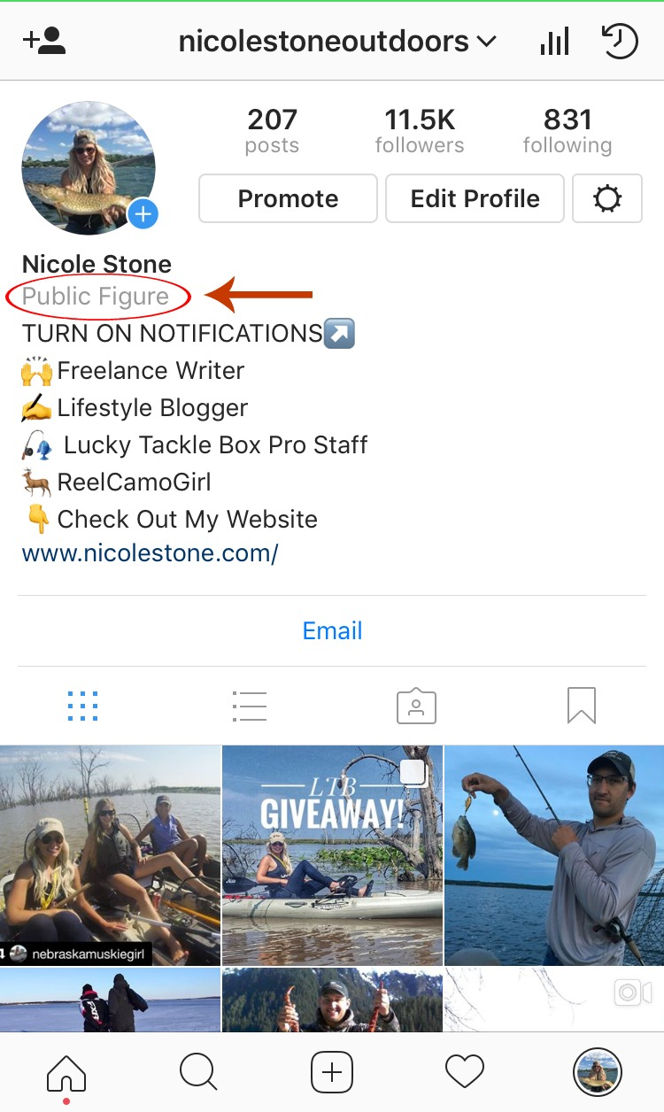 Become a Public Figure on Instagram