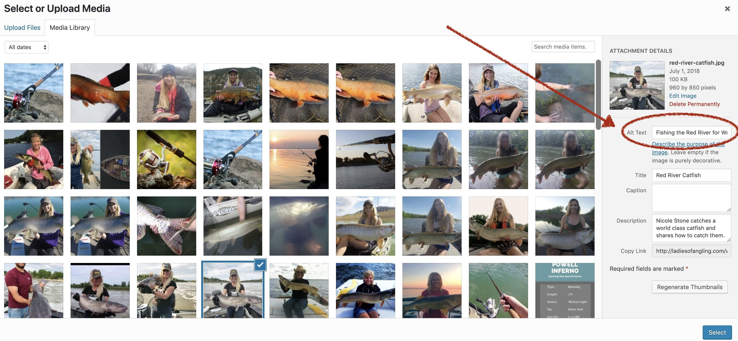 Add alt. text to Wordpress photos to improve your Google SEO.