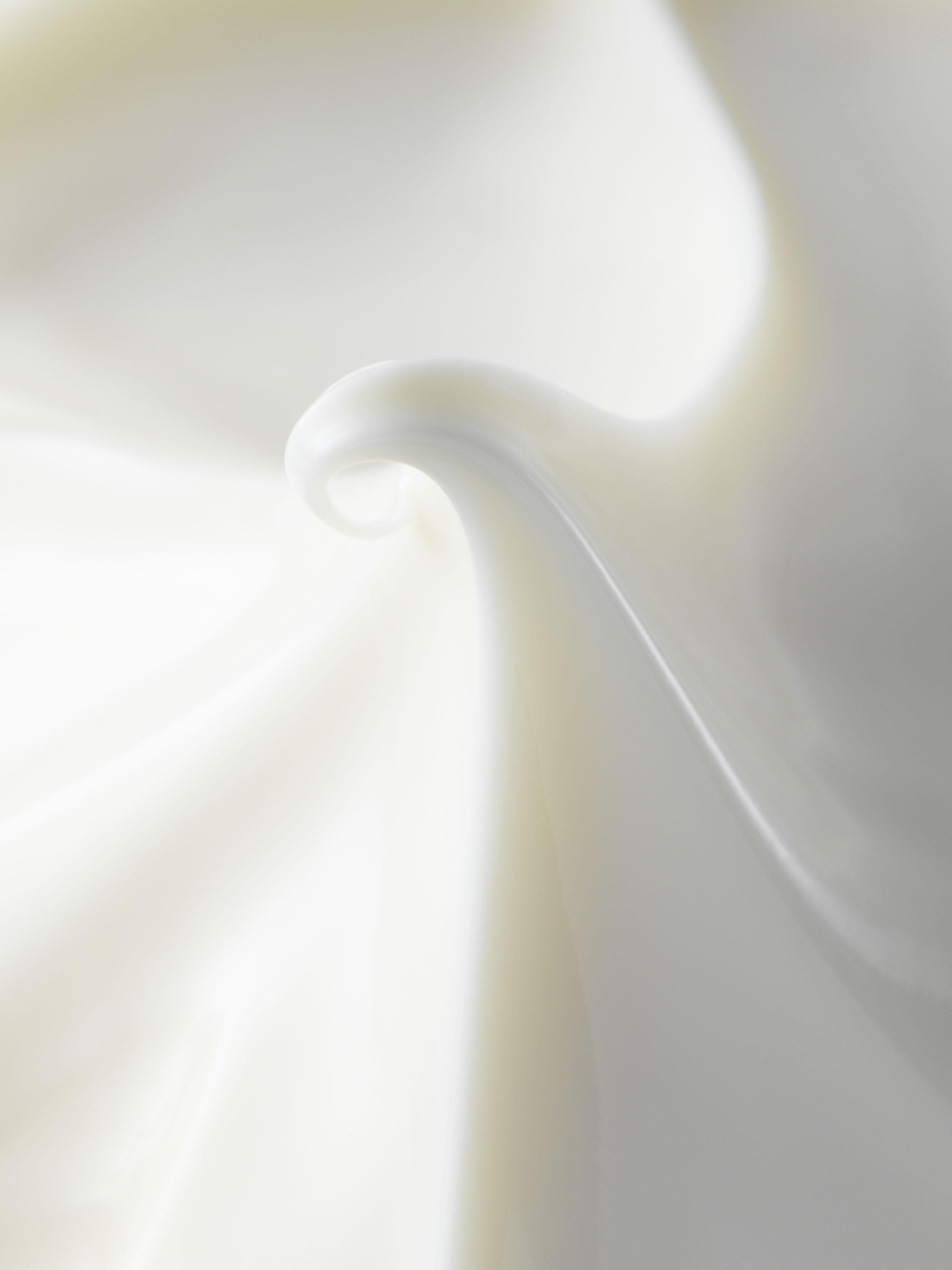 body_cream_016_RS.jpg