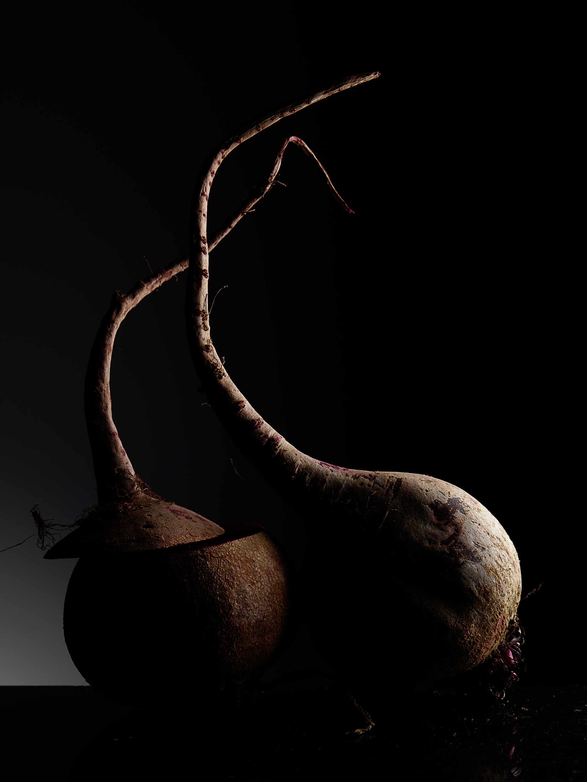 beets_022_RS.jpg