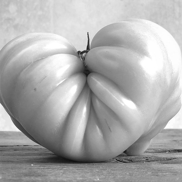#heirloomtomato #heirloom #tomato #graphic #b&w
