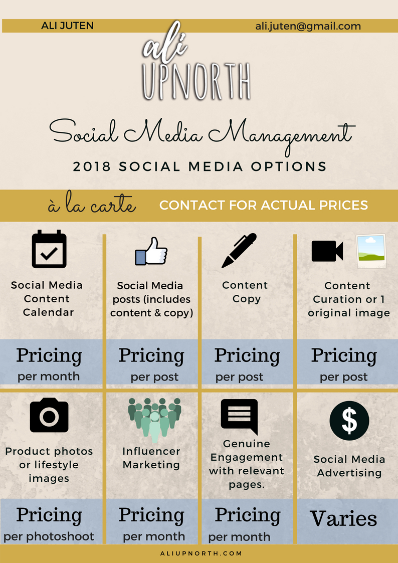AliUpnorth_2018 Social Media Management Options.jpg