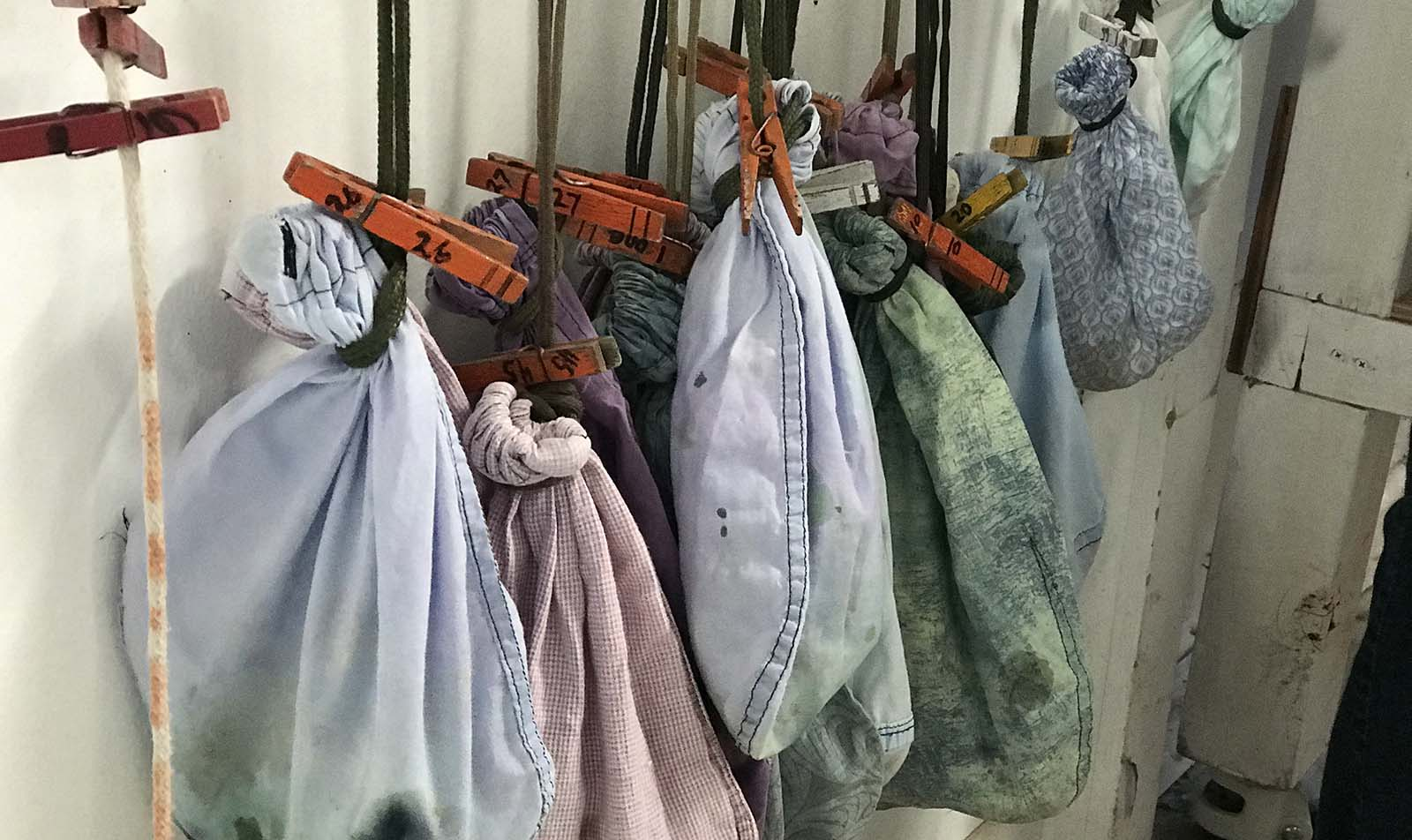 Bird bags hanging by the banding table. The birds are very calm in the bags.