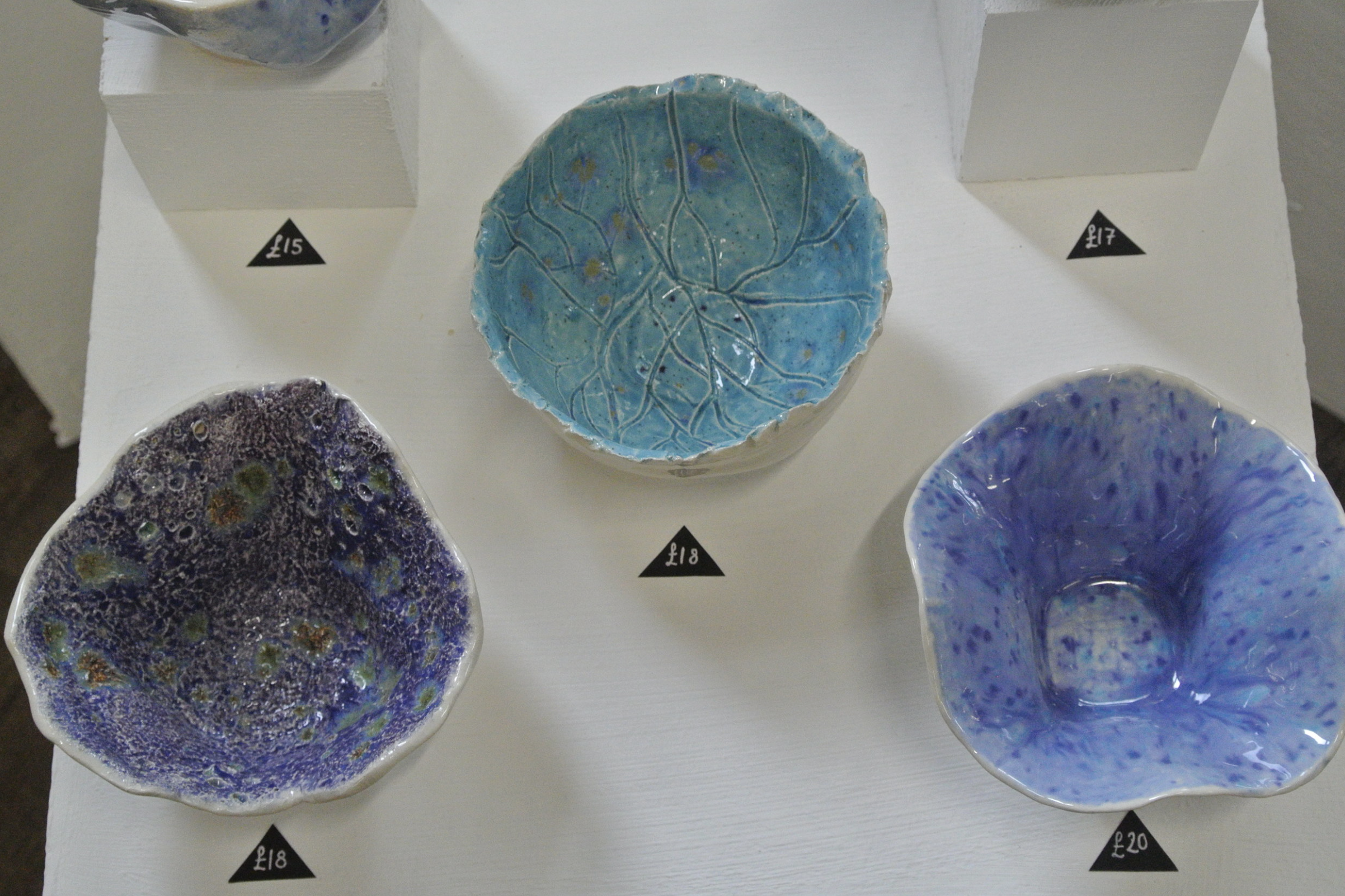 Rosie Perrett - HOMEWARE SERIES INSPIRED BY THE SEAFUTURE PLANS: SECURED A STUDIO TENANCY AT WEST STUDIOS TO CONTINUE PRACTICING HER SKILL AND SELL MORE WORK