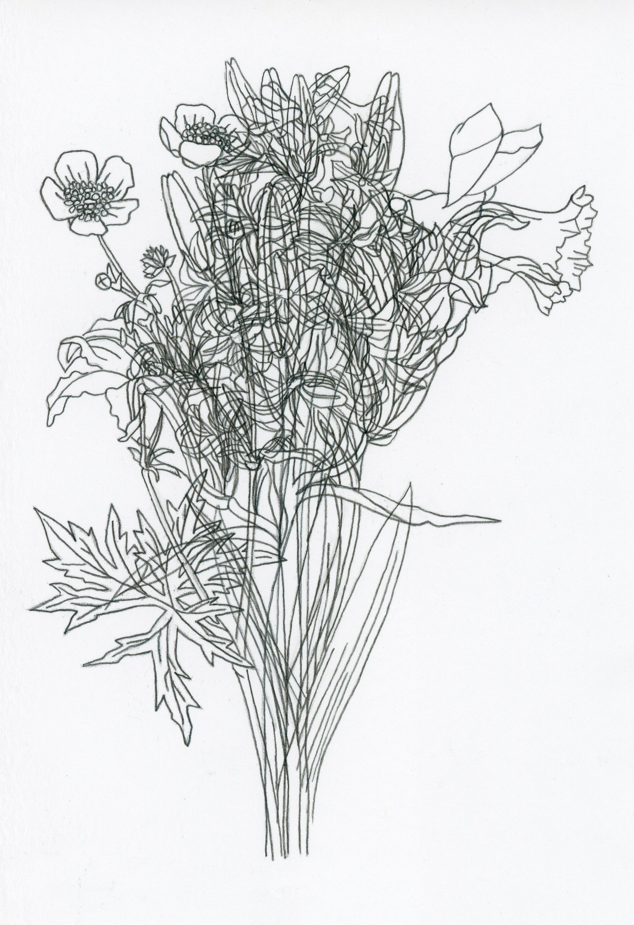 4. Carolyn Thompson - After Parker - Buttercup, daffodil, lily, hyacinth, freesia, forsythia, rose p1.jpg