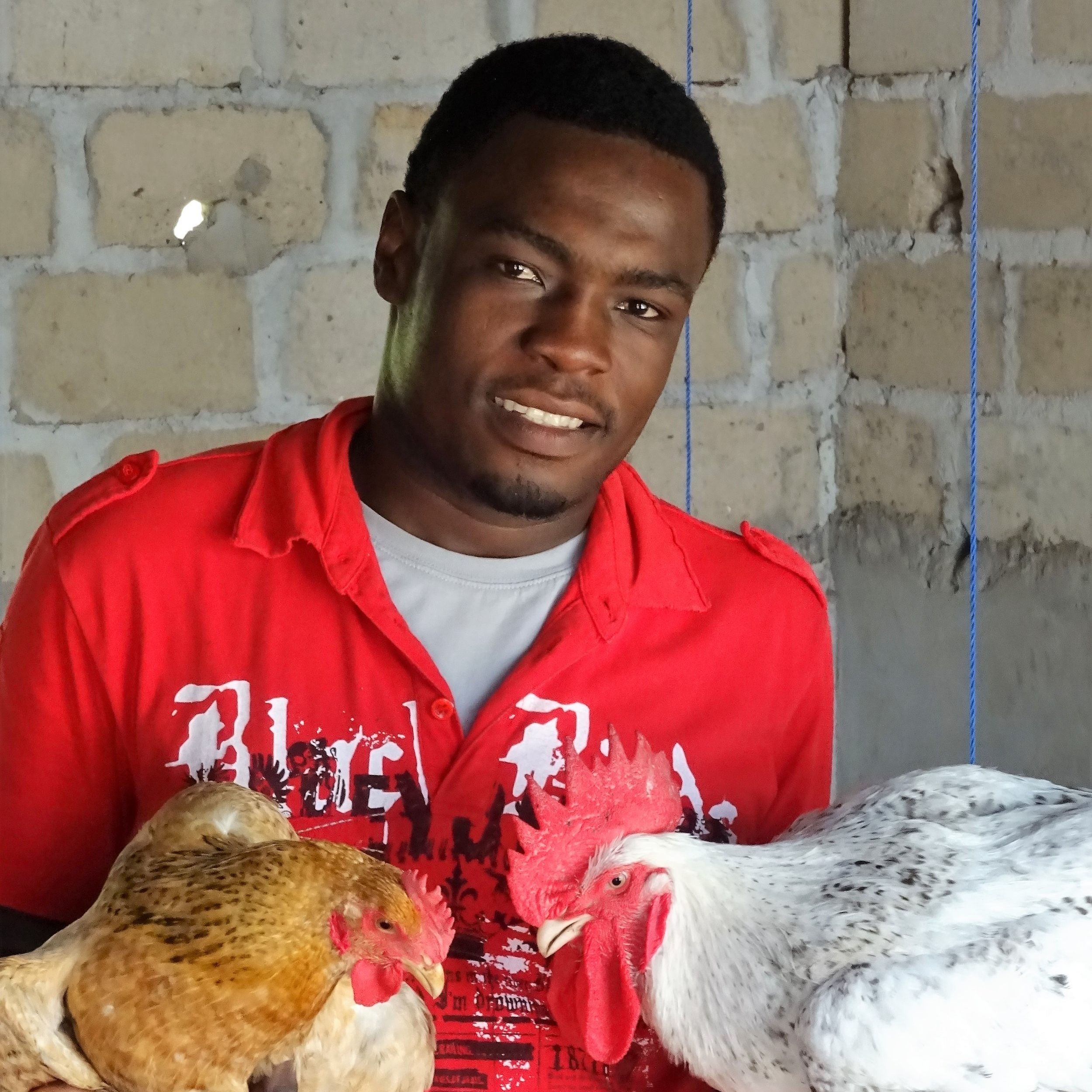 Chicken 4 Life Business Manager. Now enjoys teaching and sharing knowledge, rather than being a policeman